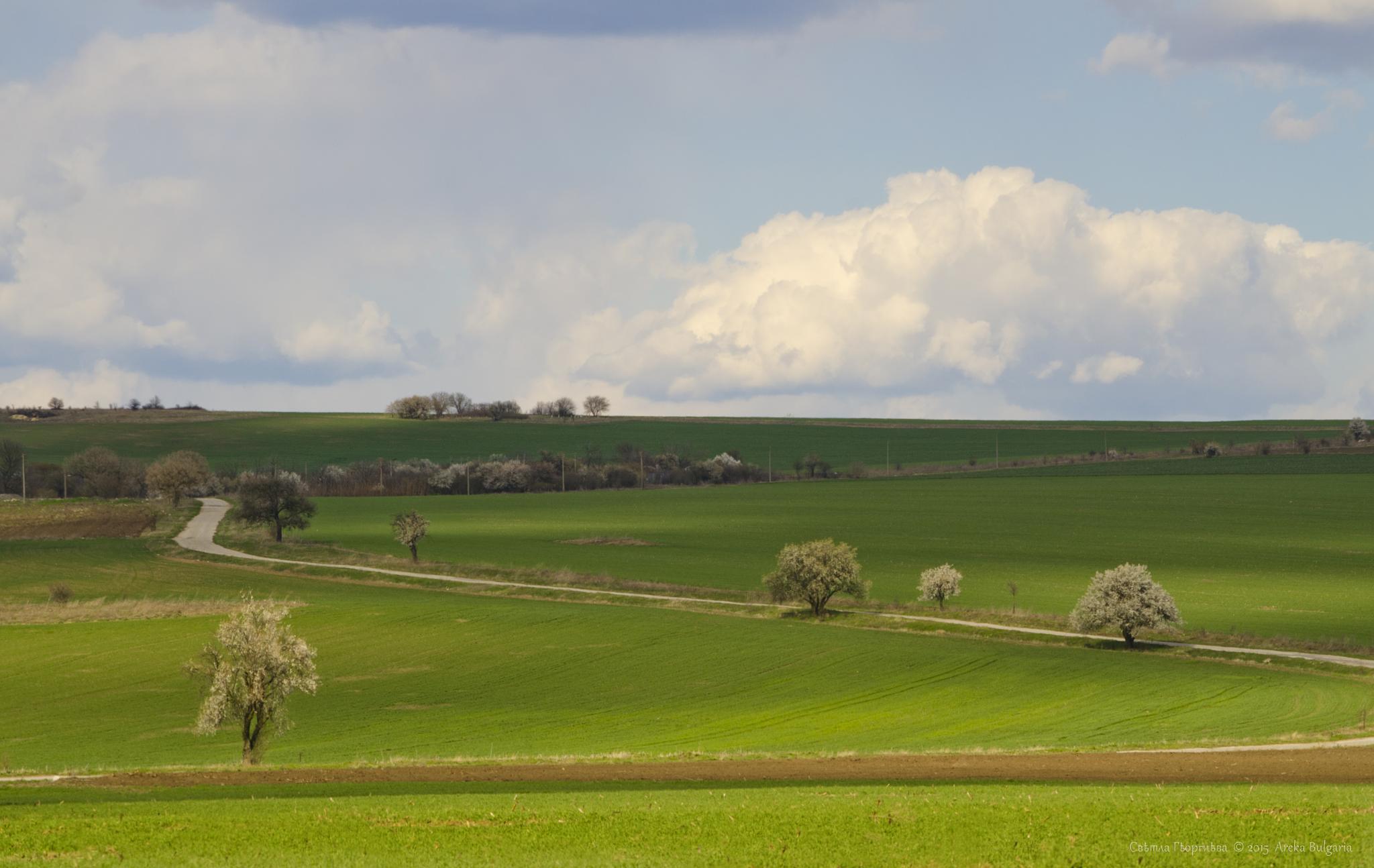 Bulgarian nature by Areka Bulgaria