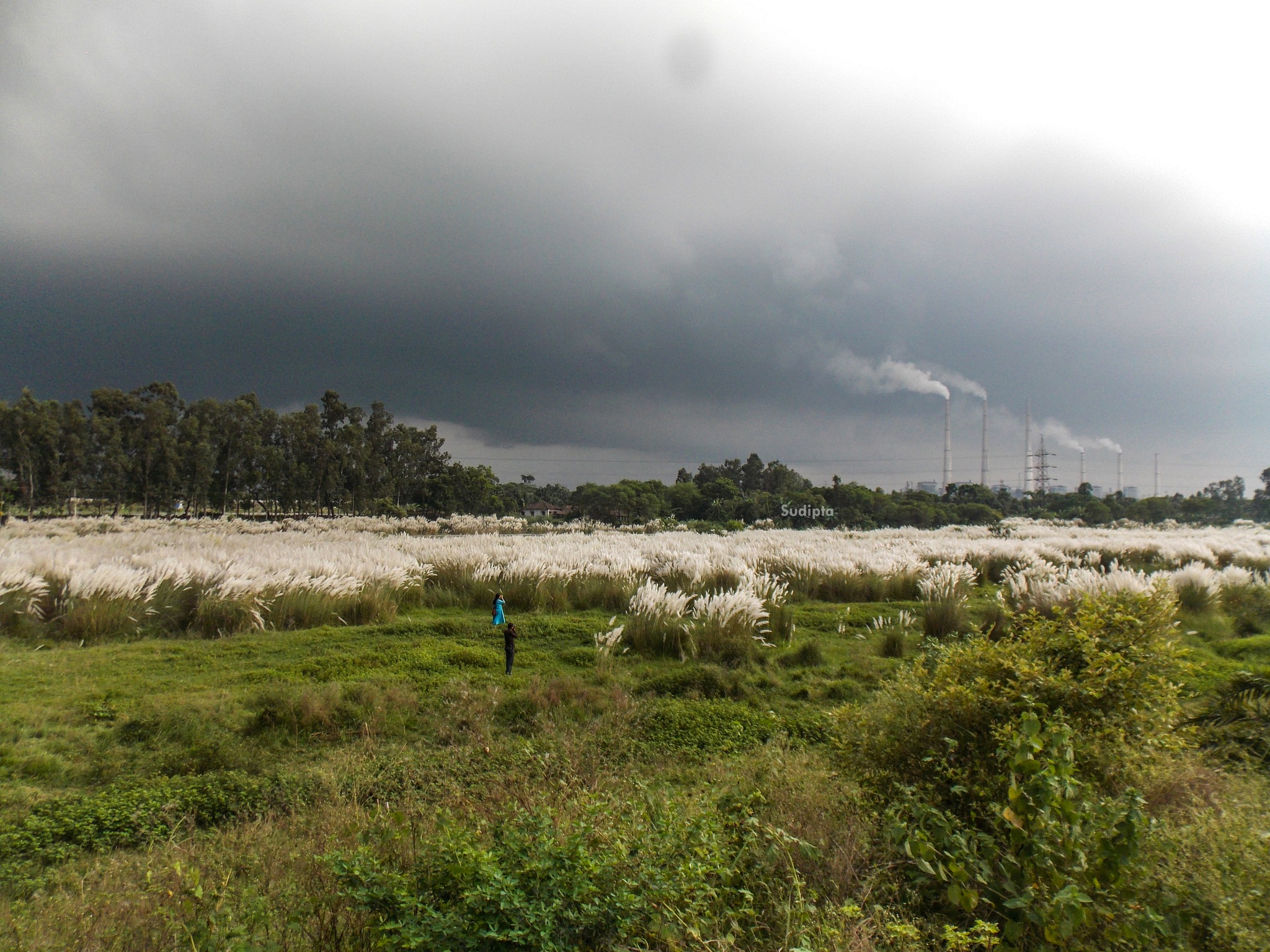 LANDSCAPE by Sudipta Mukherjee