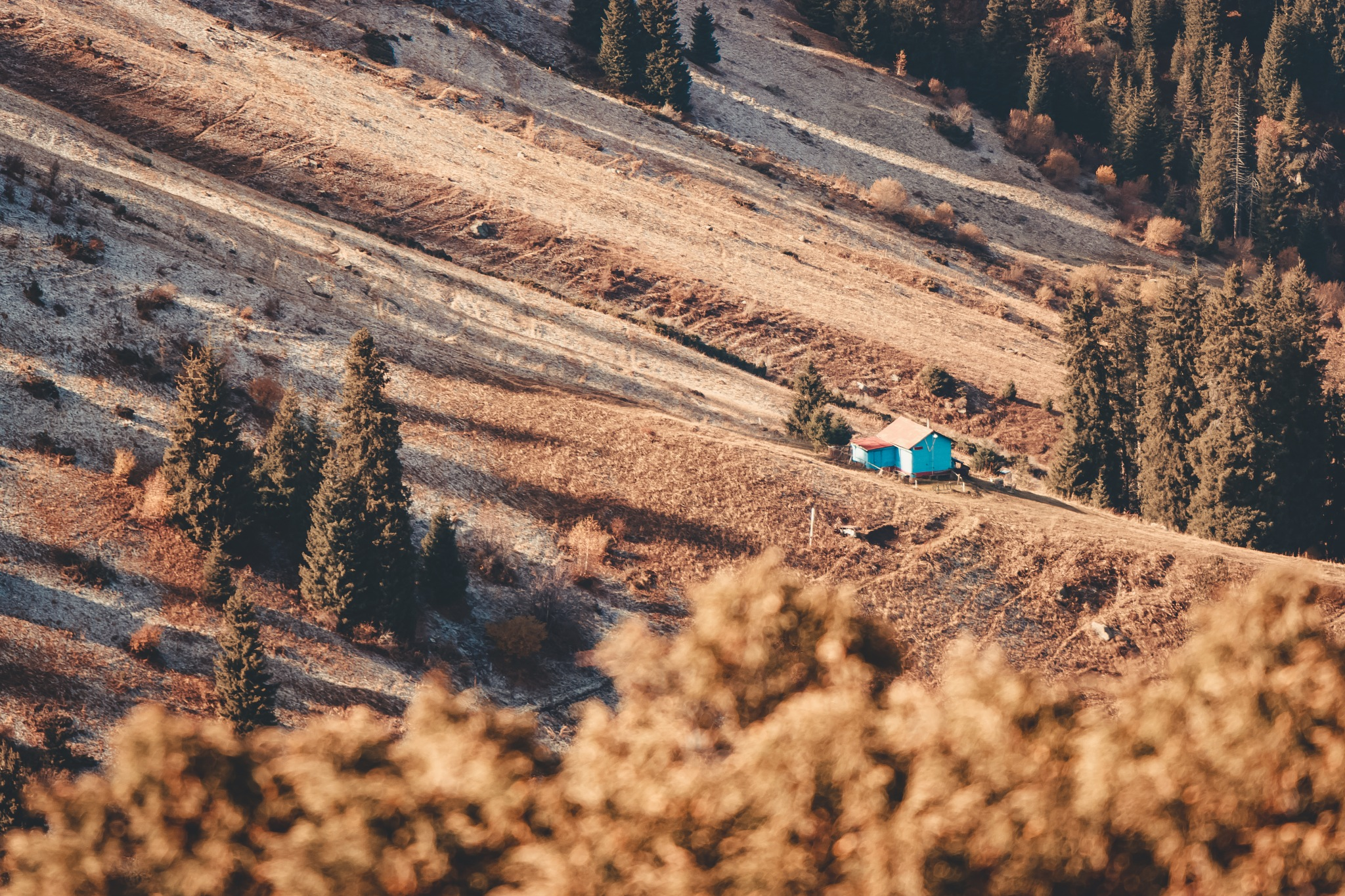 House on Top by Anton Pogoda