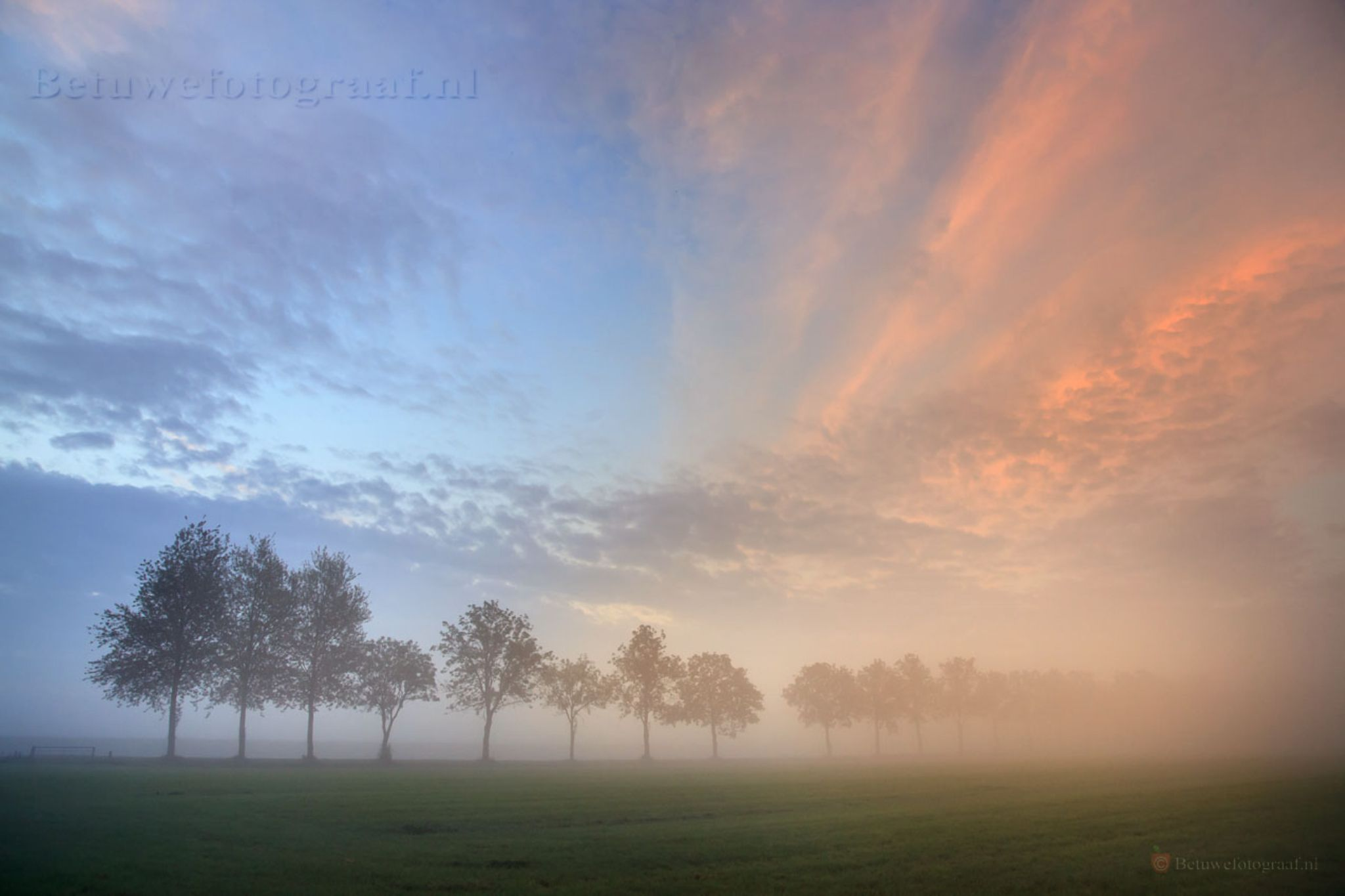 Trees in the mist by Betuwefotograaf