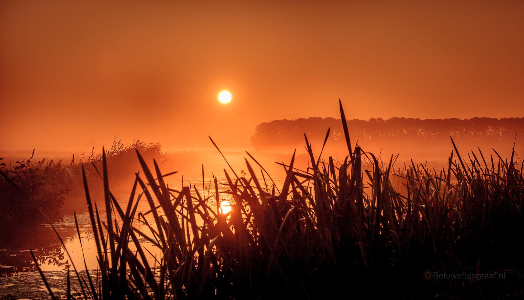 Misty Morning...........VV by Betuwefotograaf