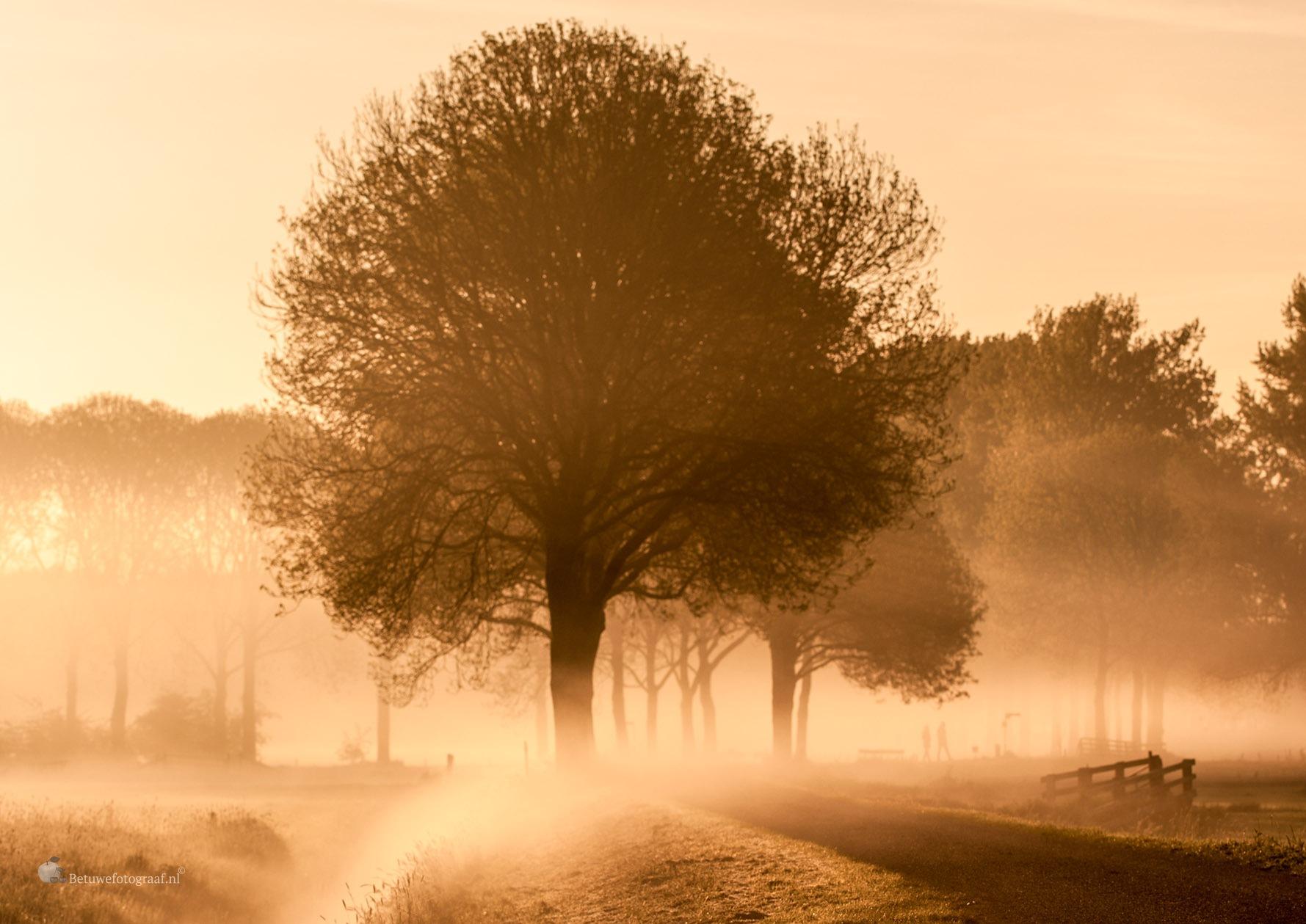 Dutch Dawn...... by Betuwefotograaf