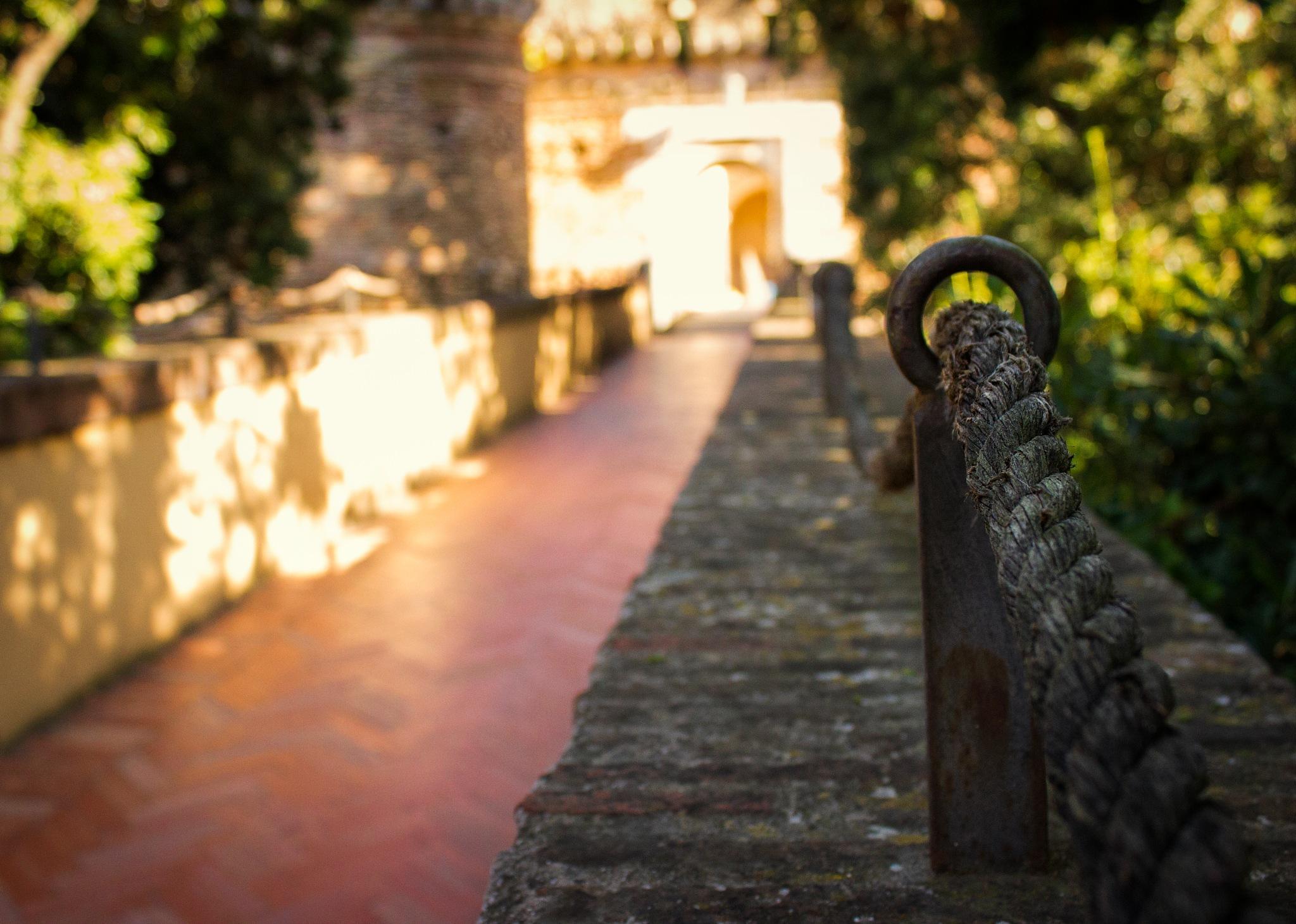 The Castello Borghese by Marcio Muniz