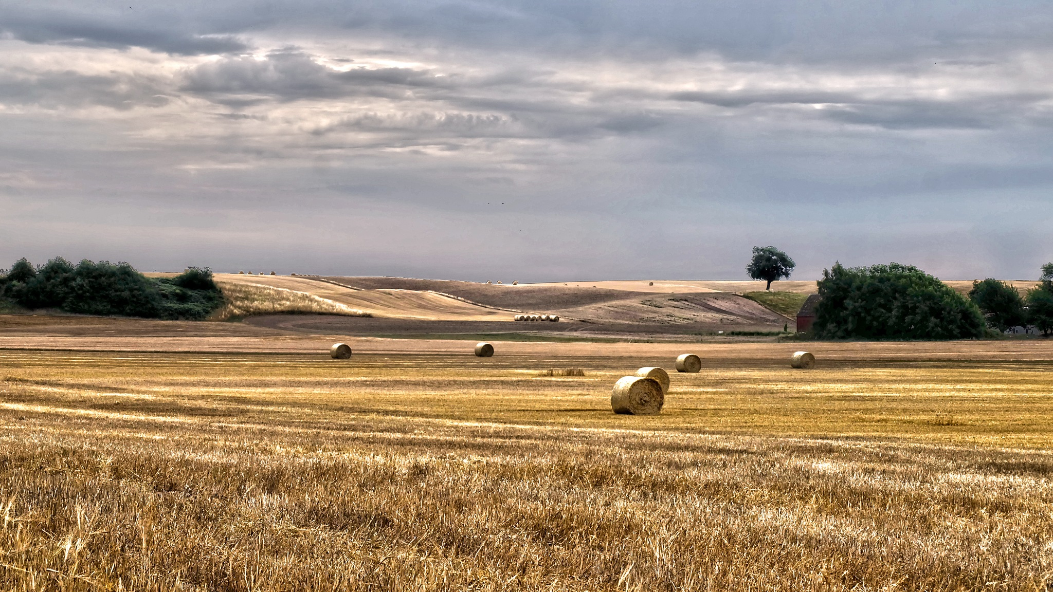 Hay bales on the fields. by stefanidemark