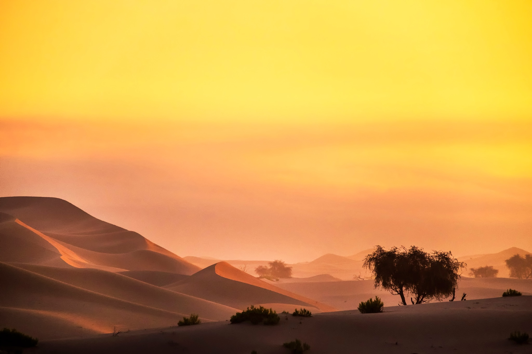 Before Sunrise by Flerida Pajate