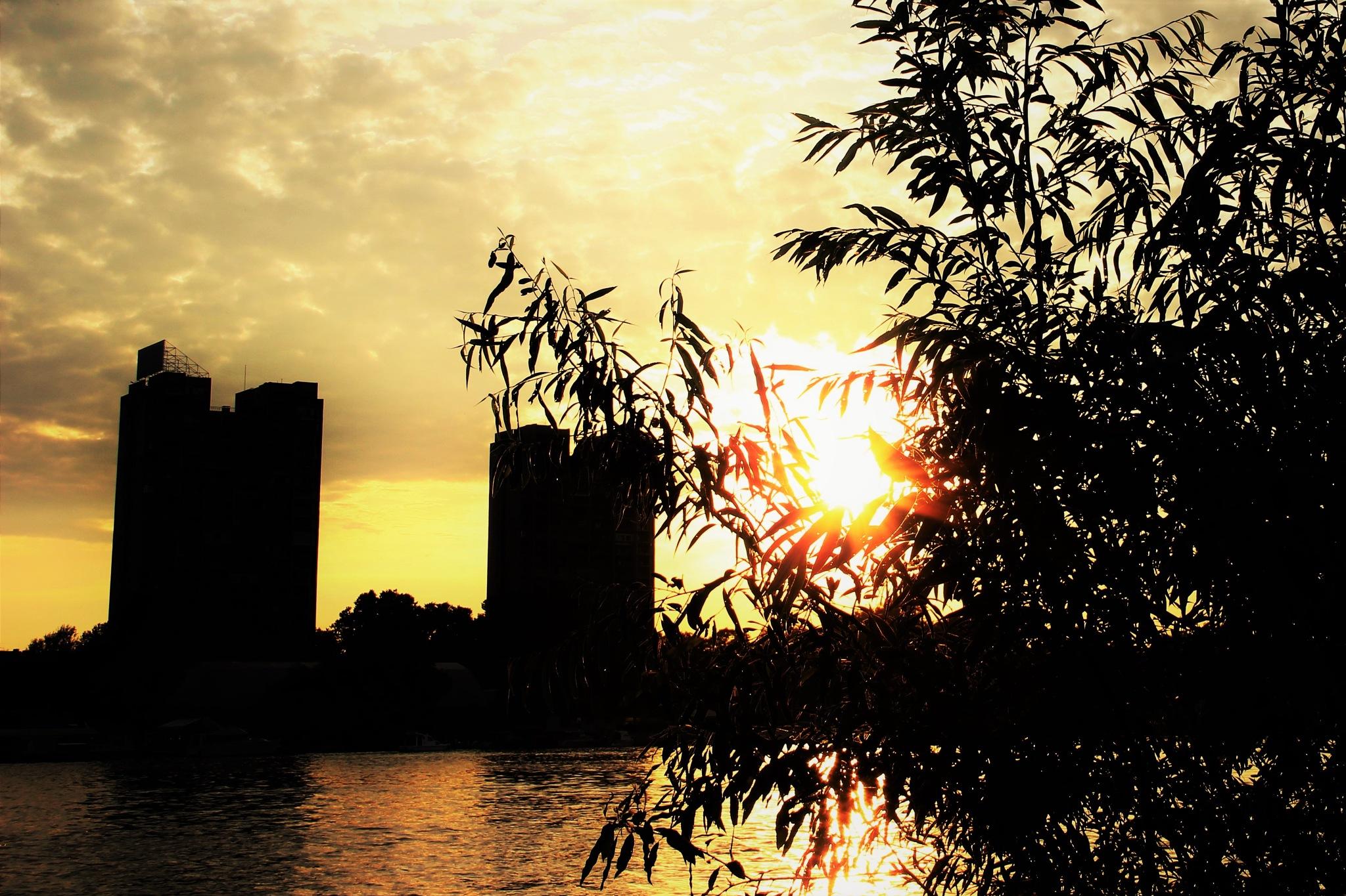 Sunset by Ana Drljaca
