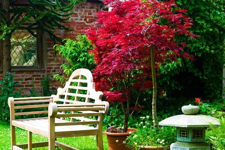 Japanese garden  by Ralph Harlow