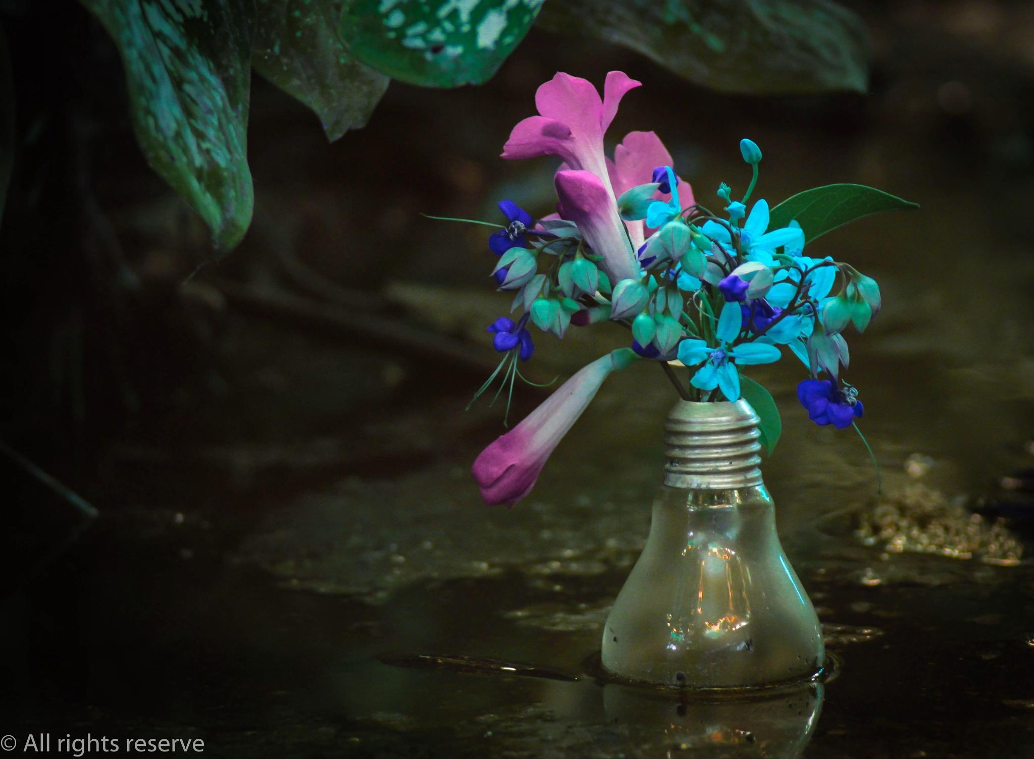 Make your creativity a reality...!!! by Ryan Nathanaël