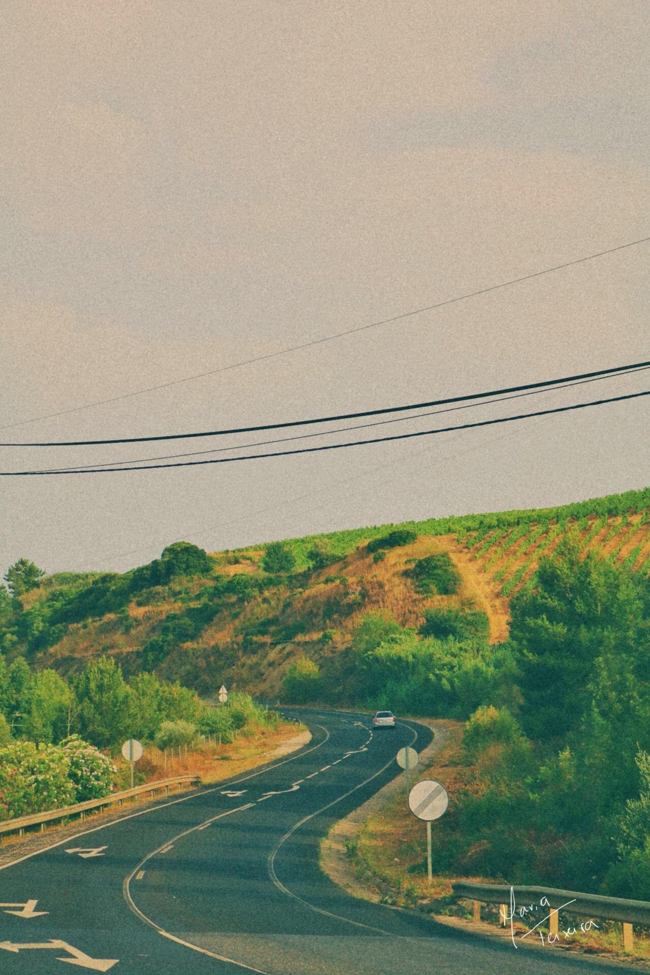 Road by Maria Teixeira