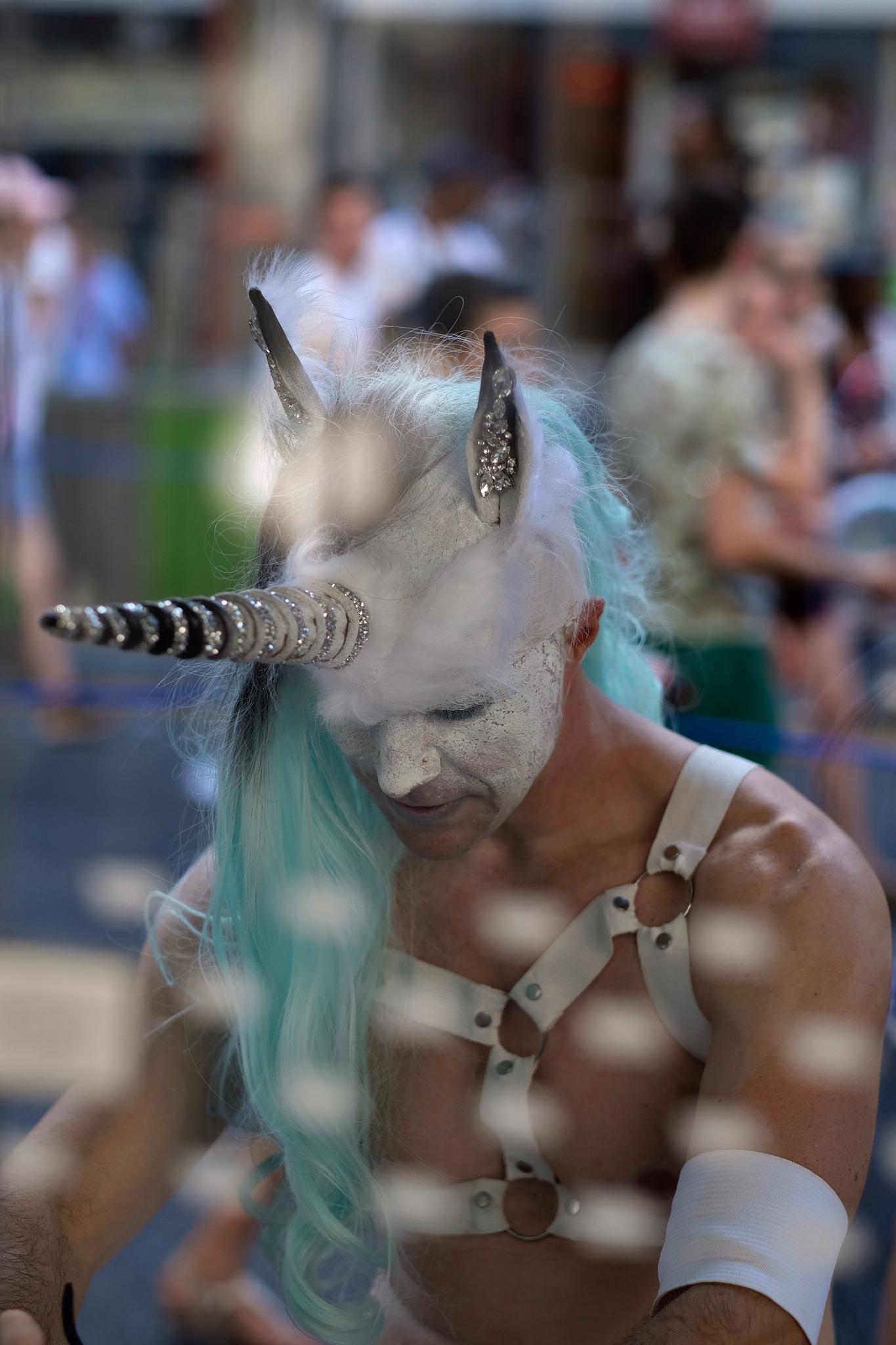 oh Licorn exists !  by Nicolas Deray