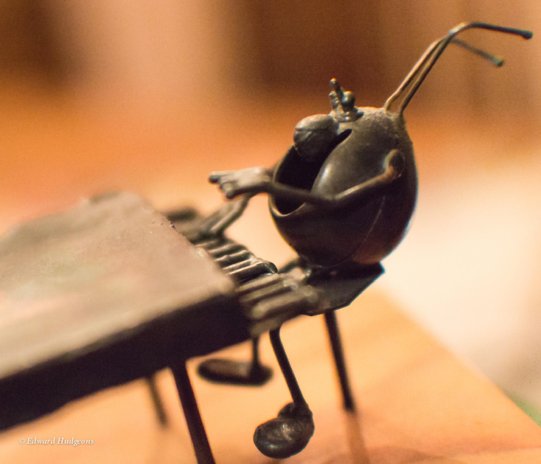 Pianoman 2 by Edward Hudgeons