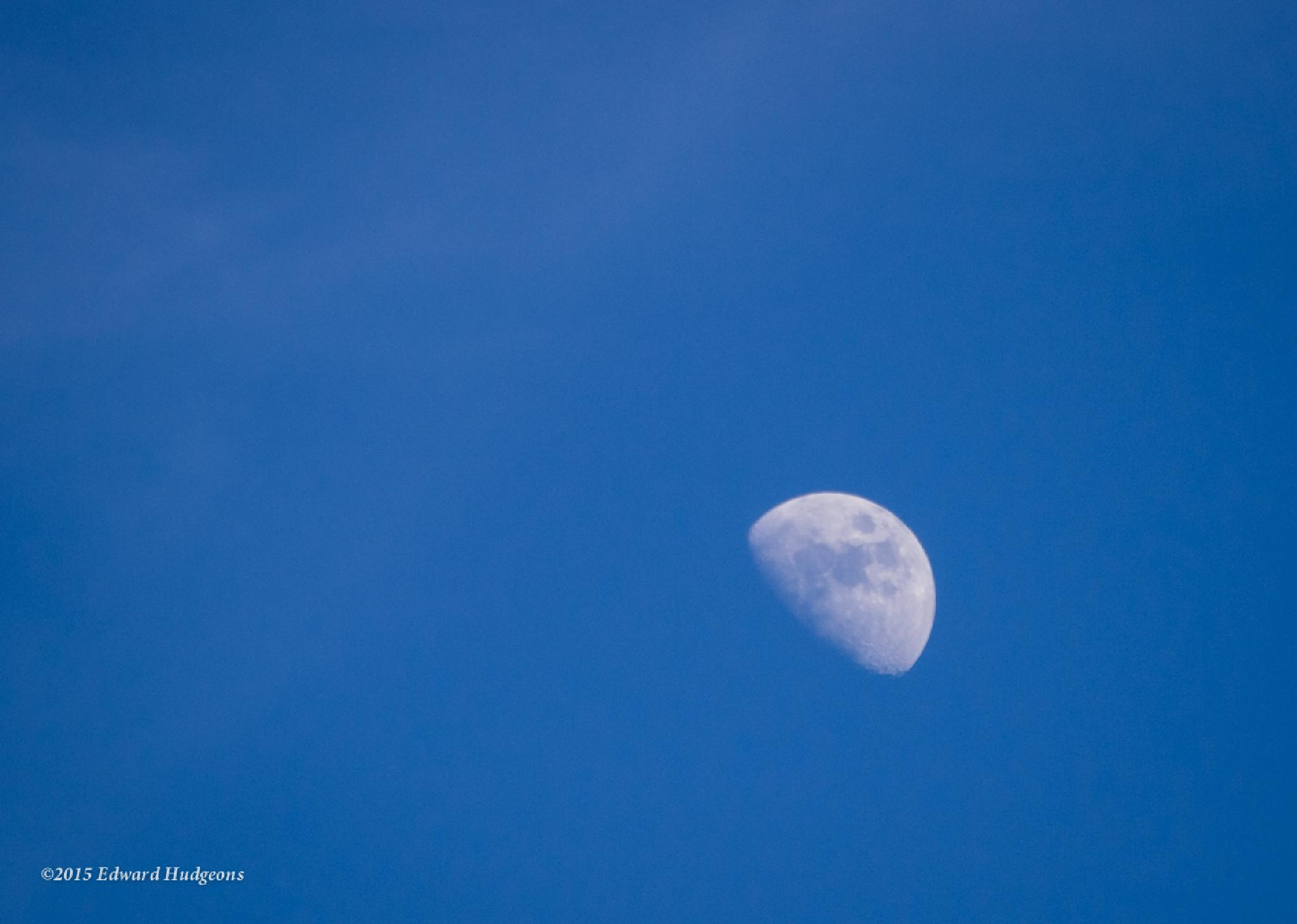 Afternoon moon by Edward Hudgeons