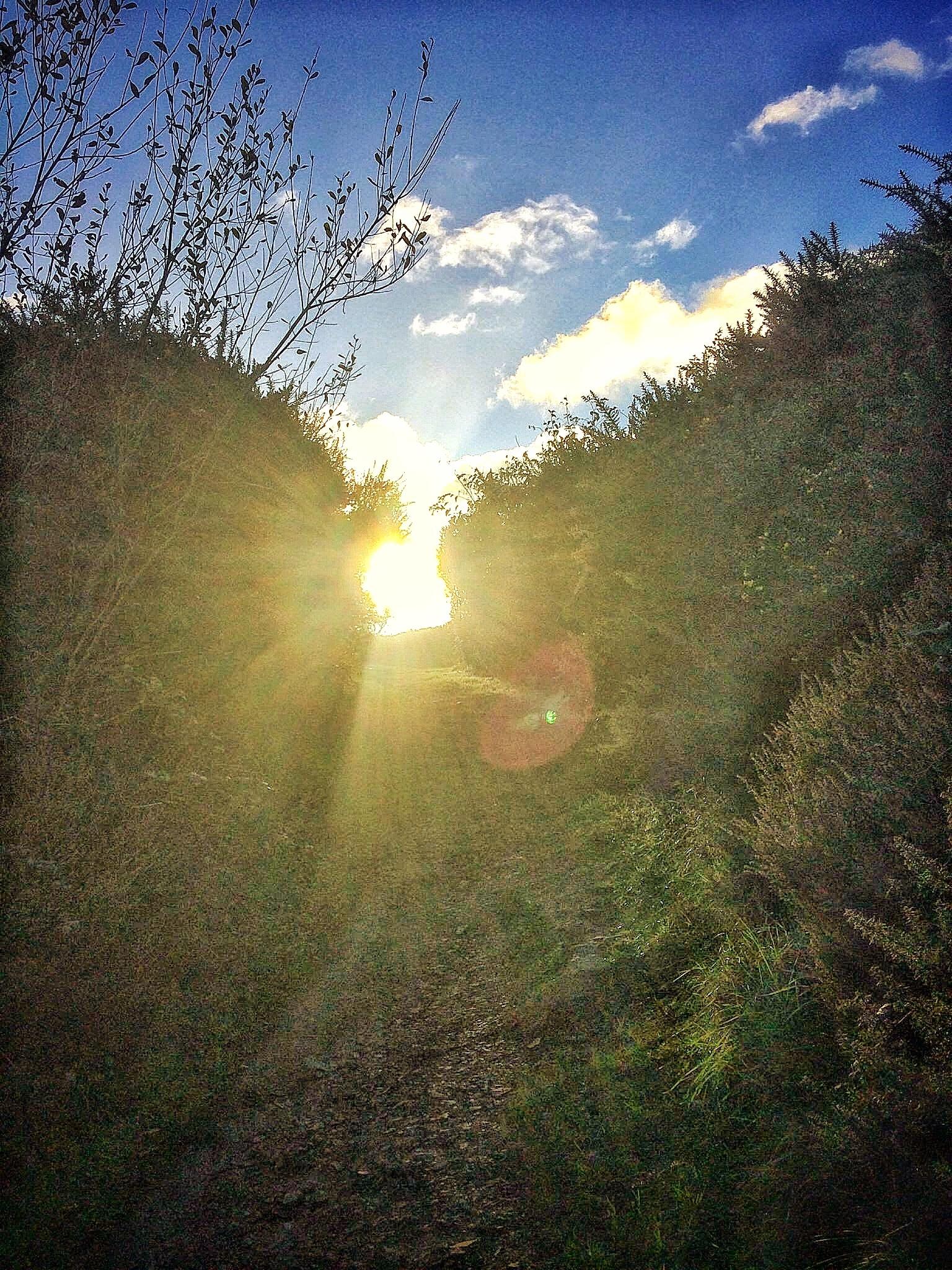 Path to Sunrise by Joshua Chaput