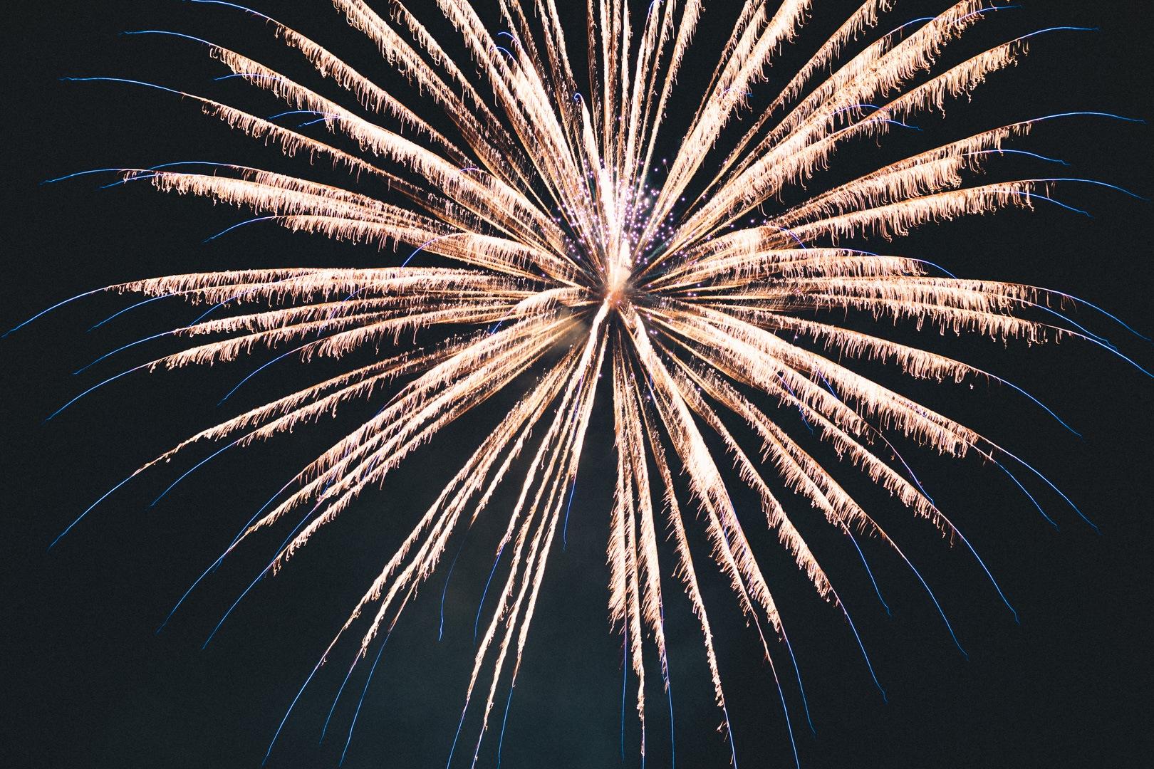 fireworks by sarah fidai