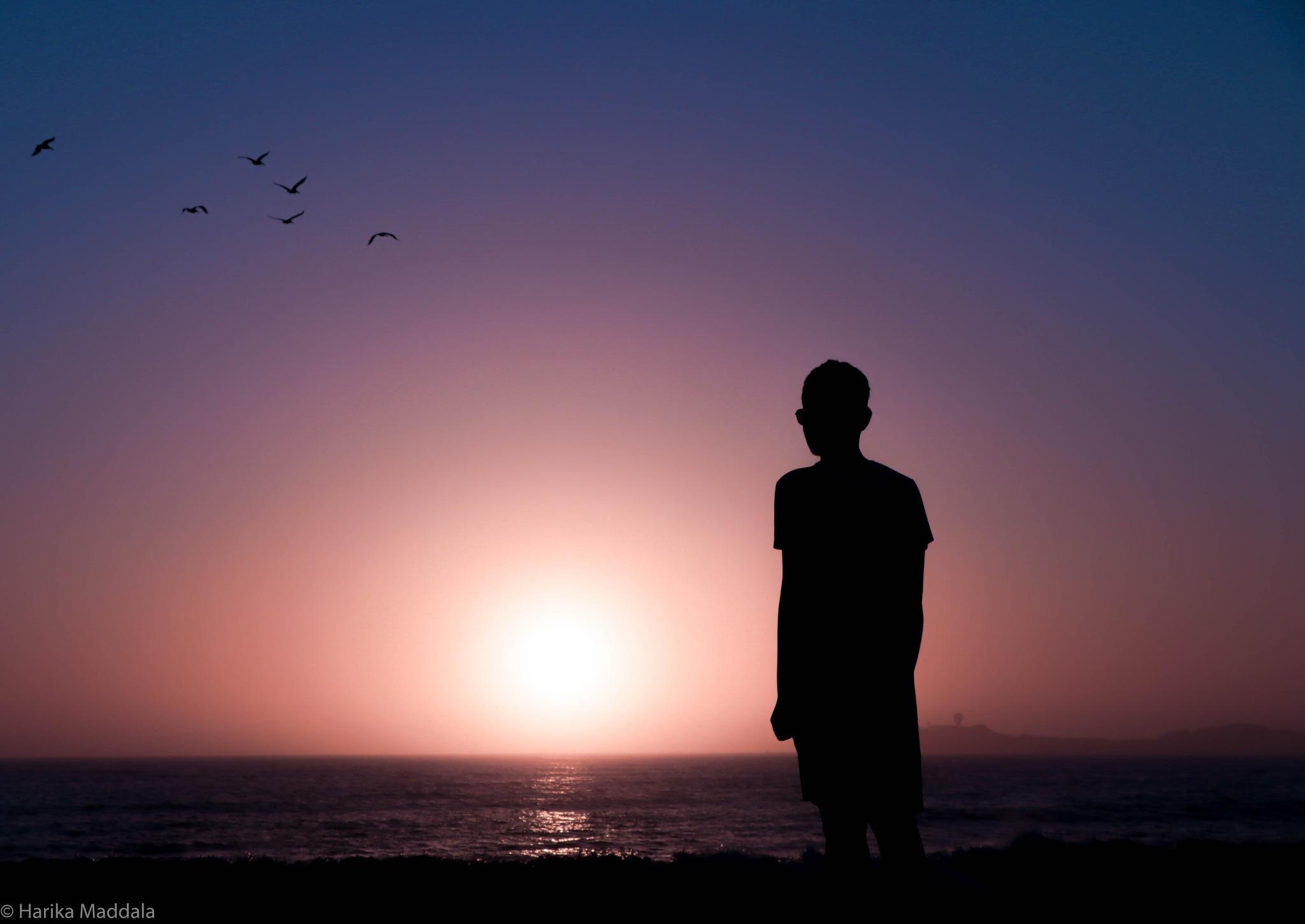 Sunset by Harika Maddala