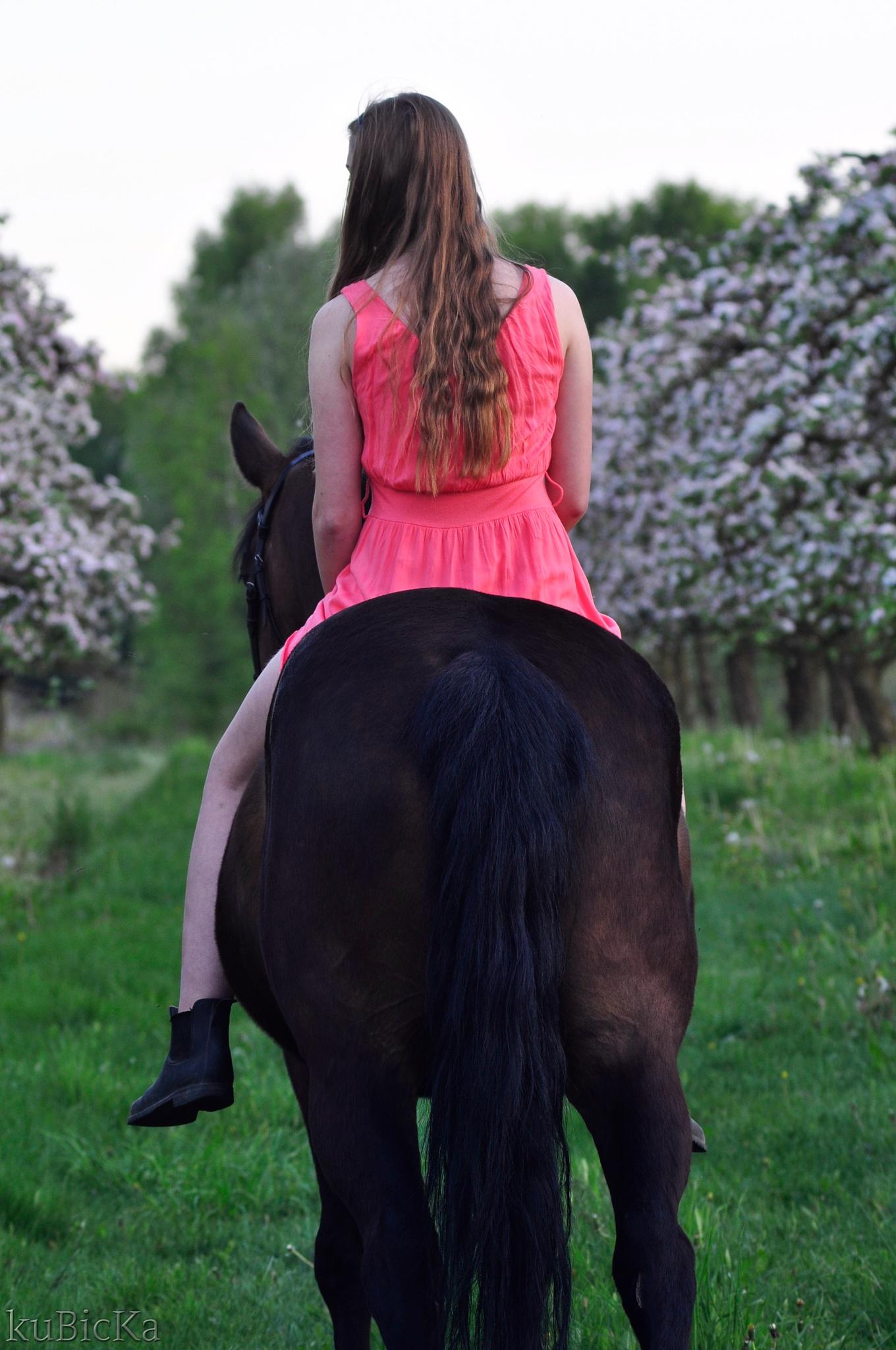 Photo in Animal #horses #people #spring #dress #girl
