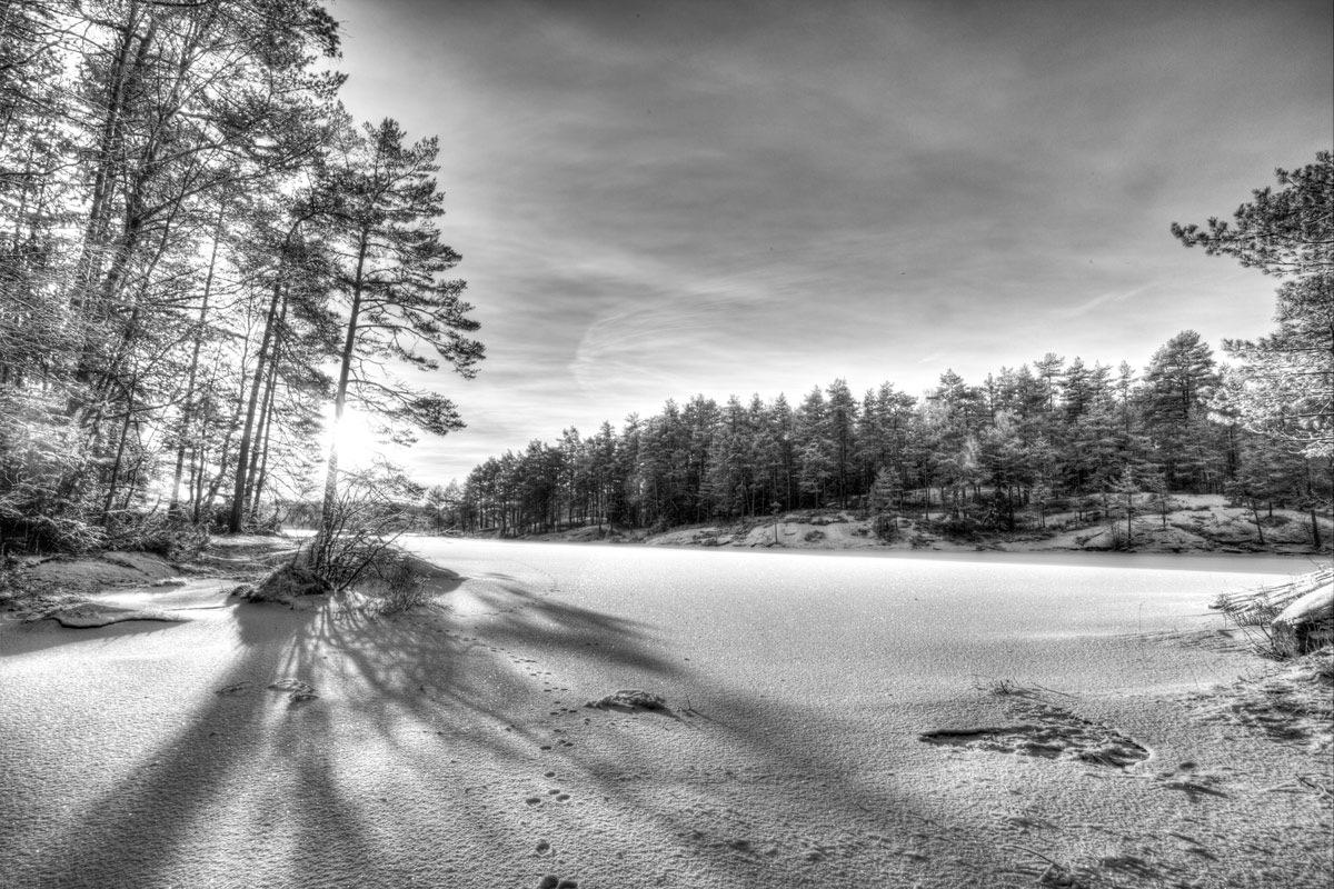 winter  by Einar Bjaanes