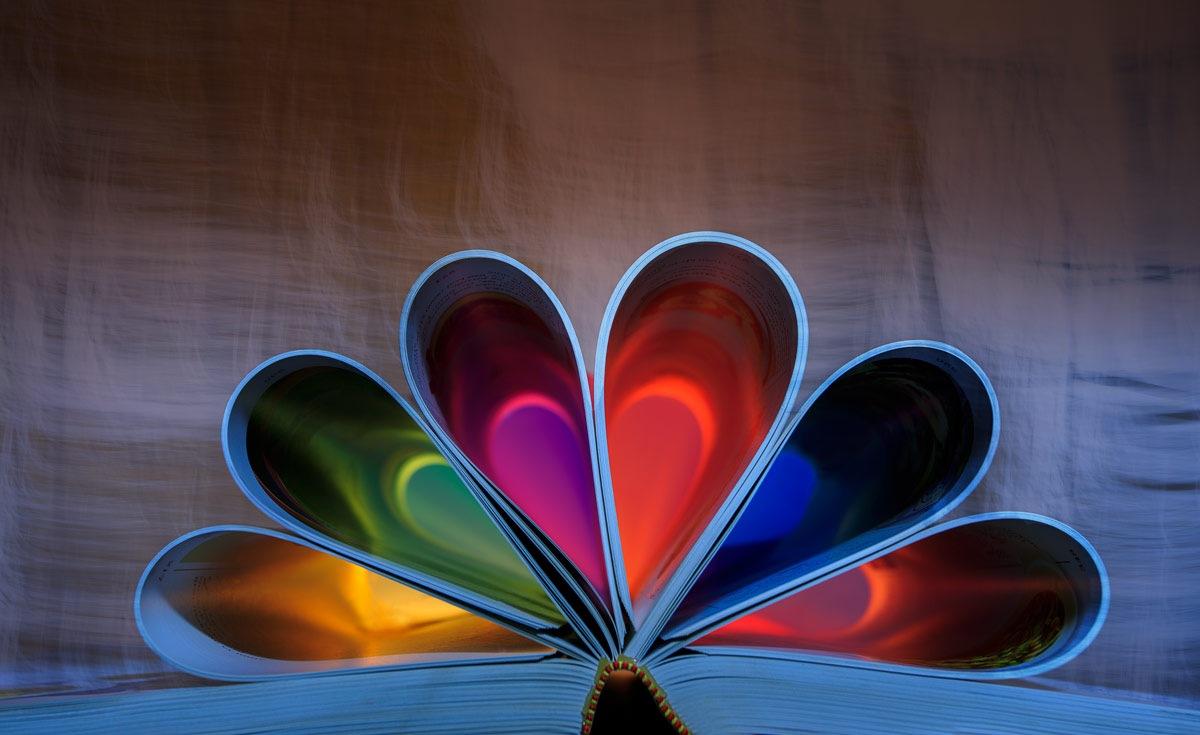 The color book by Einar Bjaanes