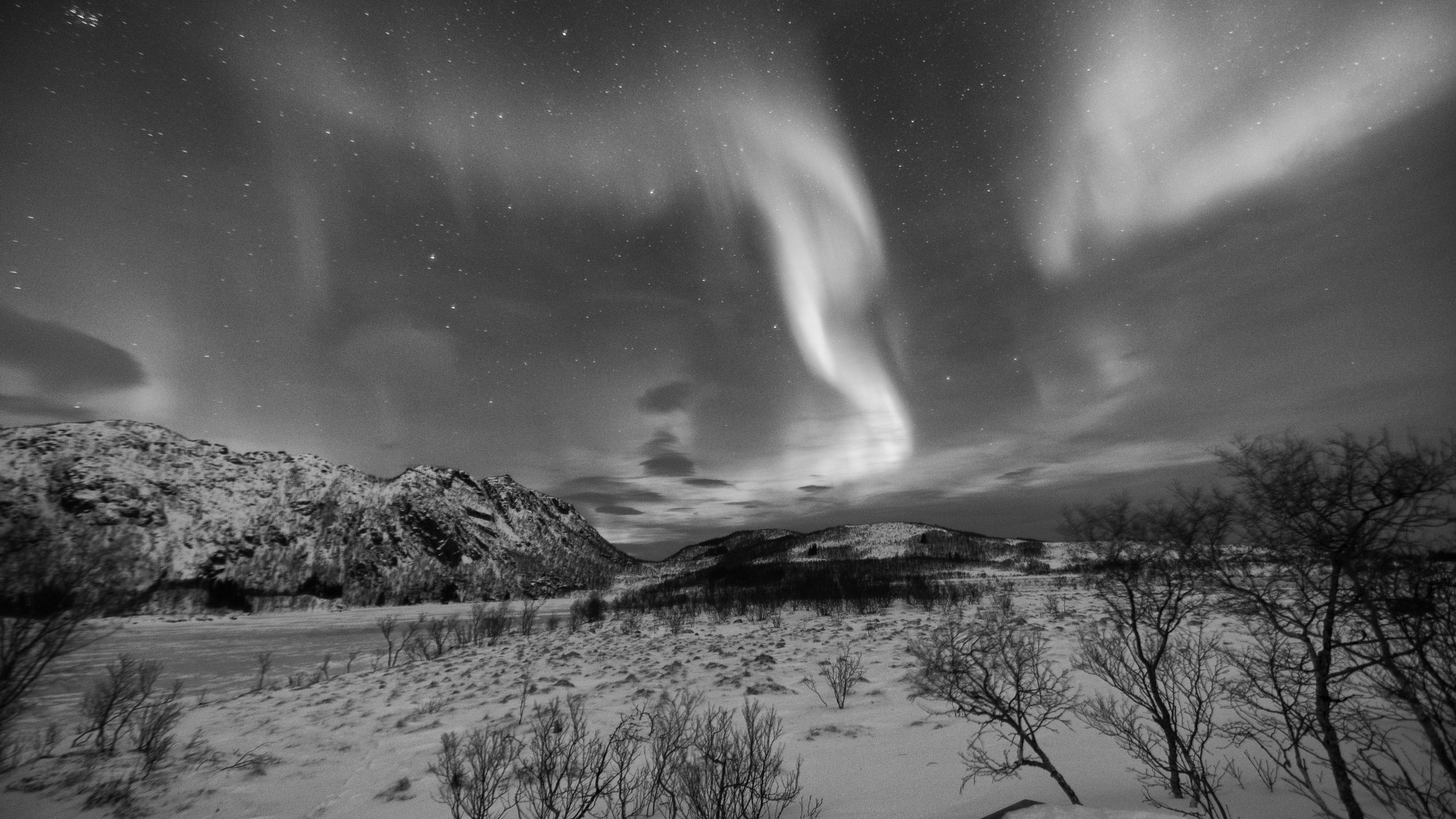 black and white northern lights by craqueur