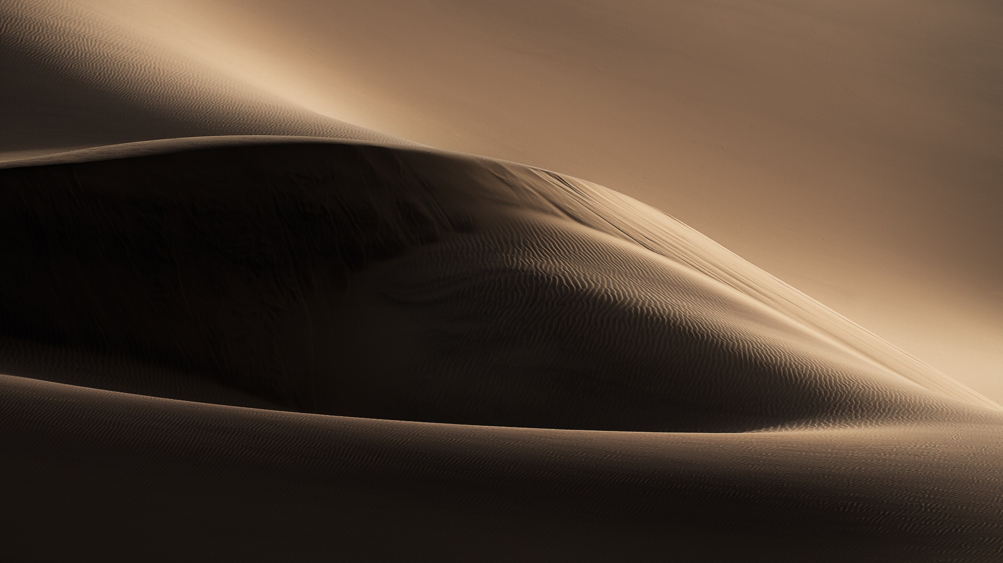 Dunescape by Xenia
