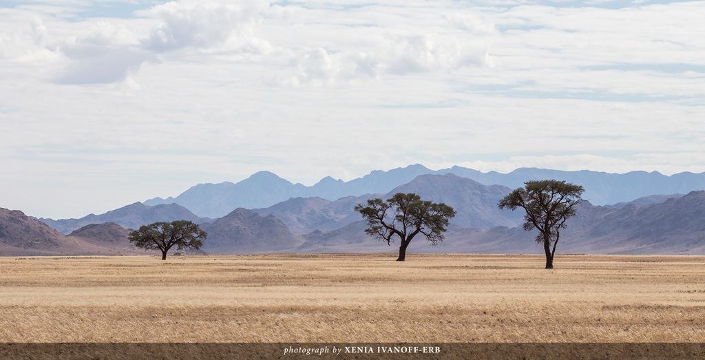 Namib Naukluft by Xenia