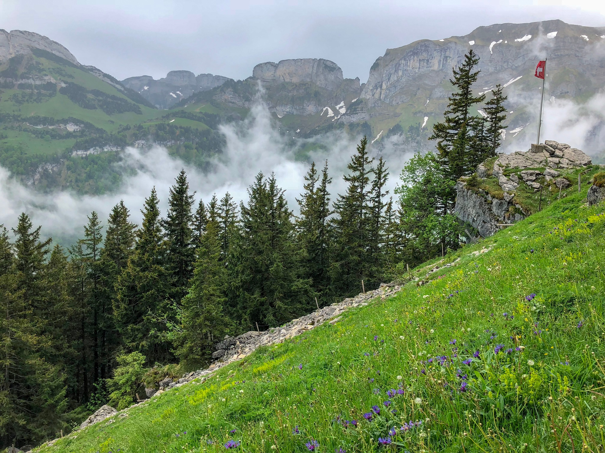 Swiss mountain hike  by Kristin