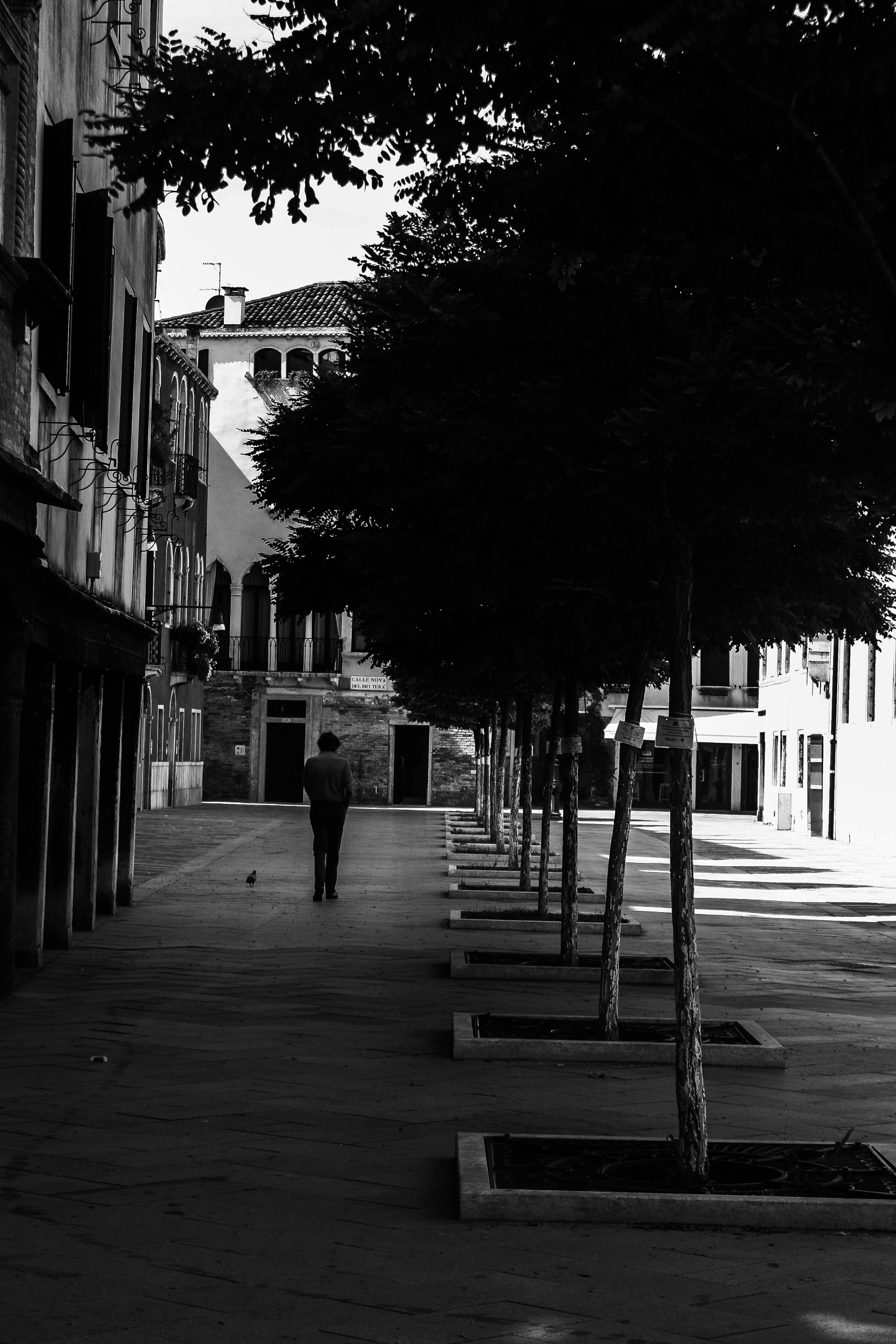 An old gentleman in the streets of venice by Lagrassa Margot