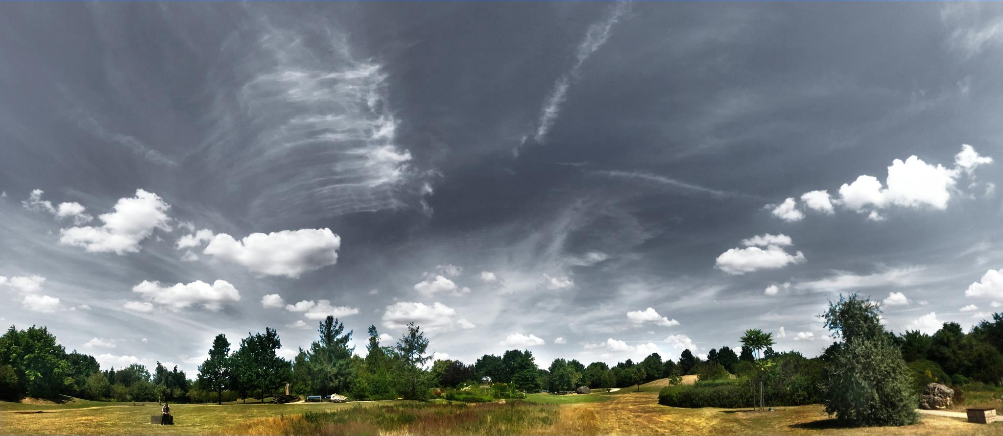 Heaven over Park by Frank Brandes