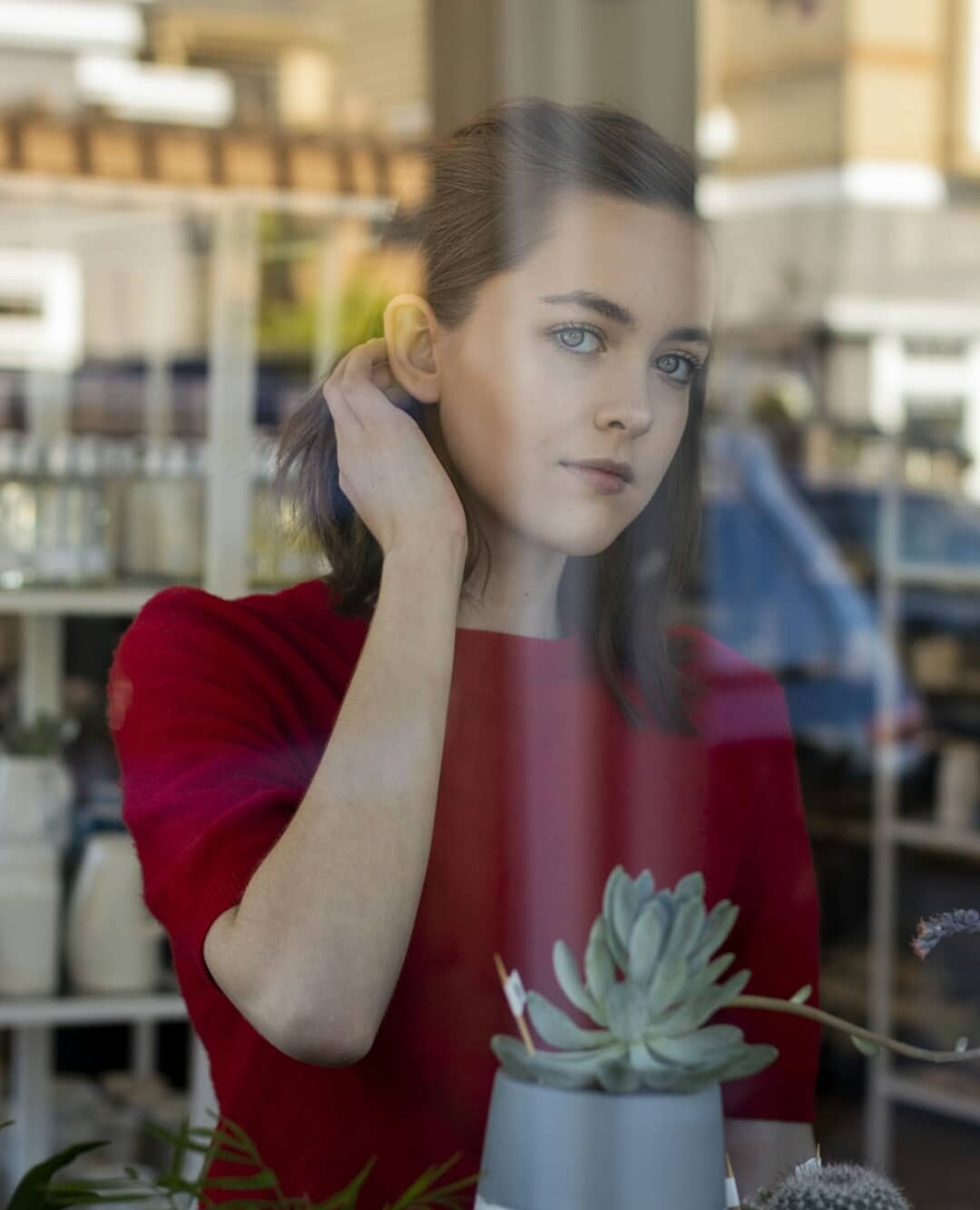 Window Shopping by Jasmine Evans