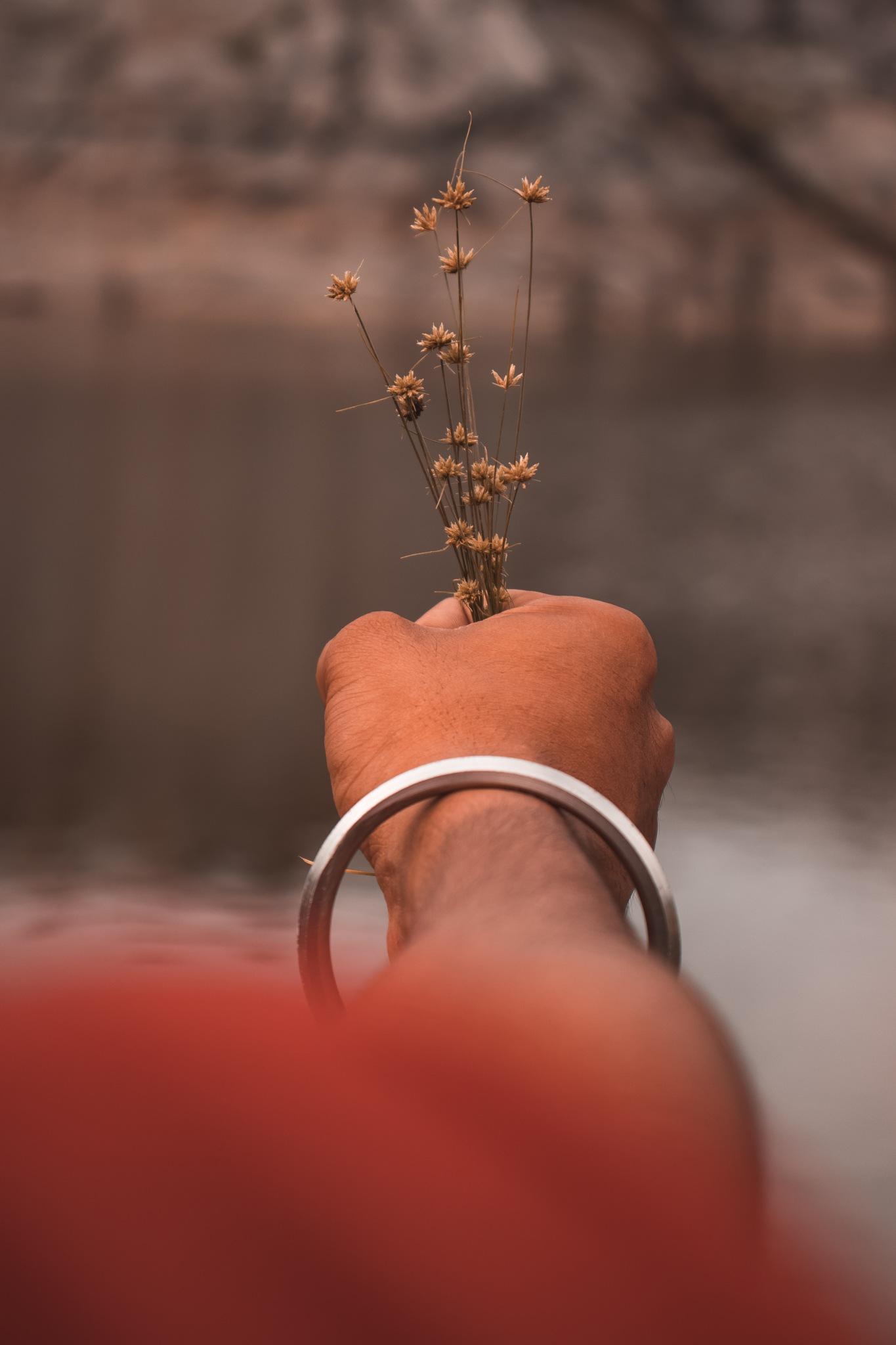 Weed Flowers by Ritu Raj