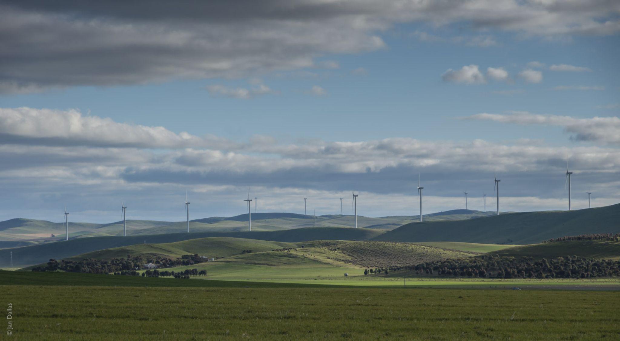 More wind farms.  by Jan Dallas