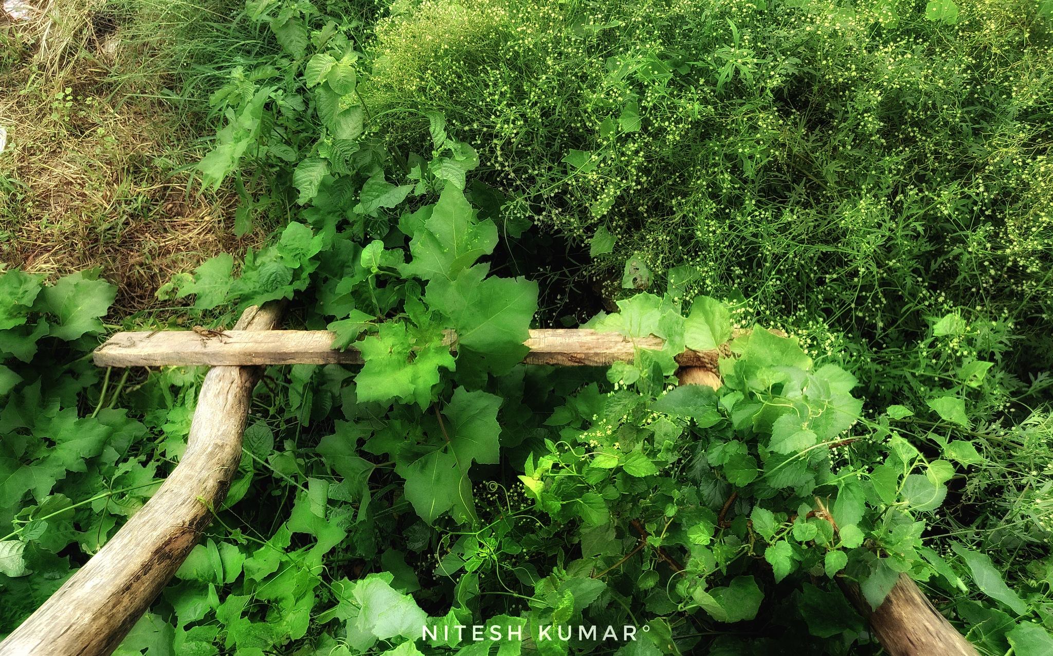 stairs by Nitesh kumar