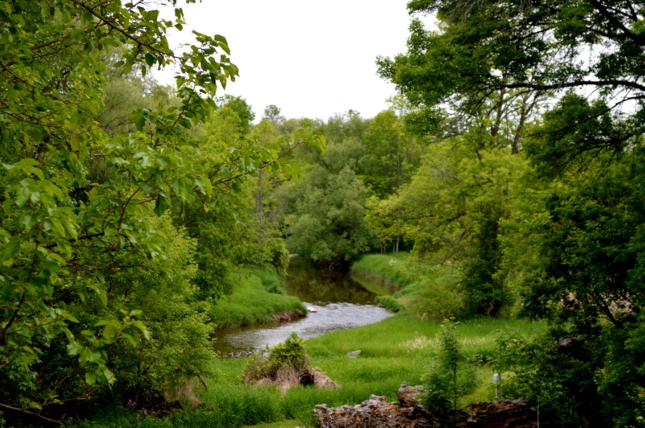 Maywood Park Sheboygan Wisconsin by Karen Mayer