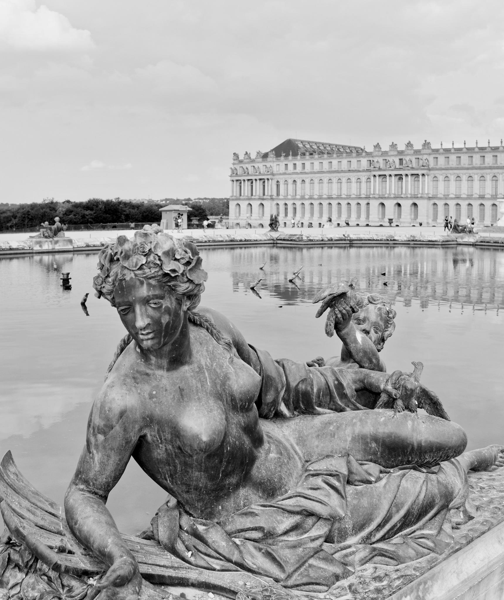 Château de Versailles by Aurélien Campéas