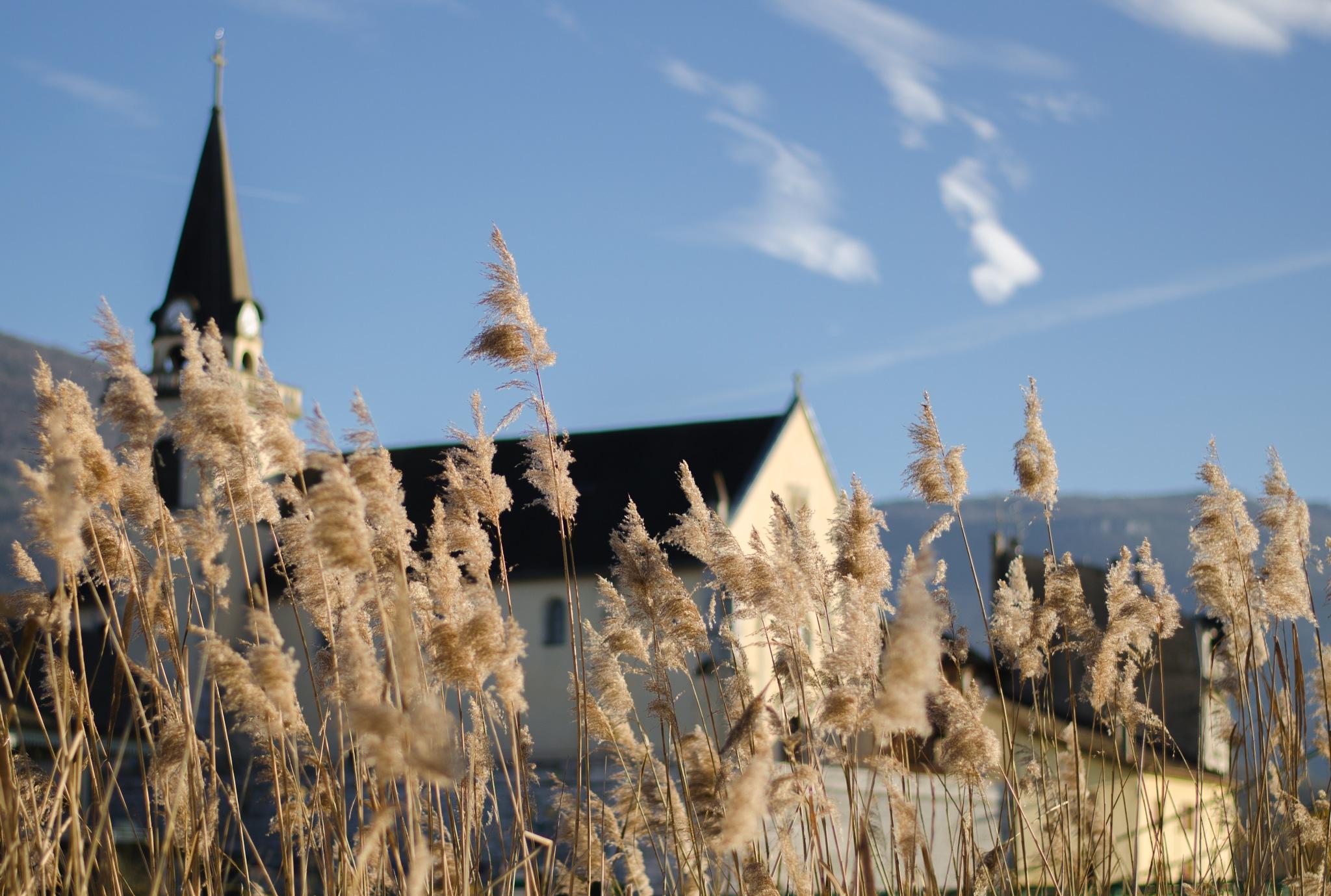 Eglise de Seyssel by Aurélien Campéas