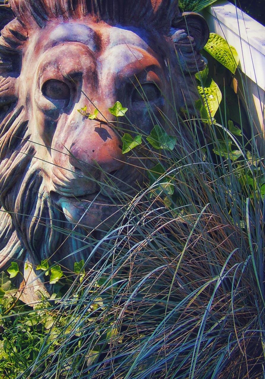 Untitled by Arthur Furst