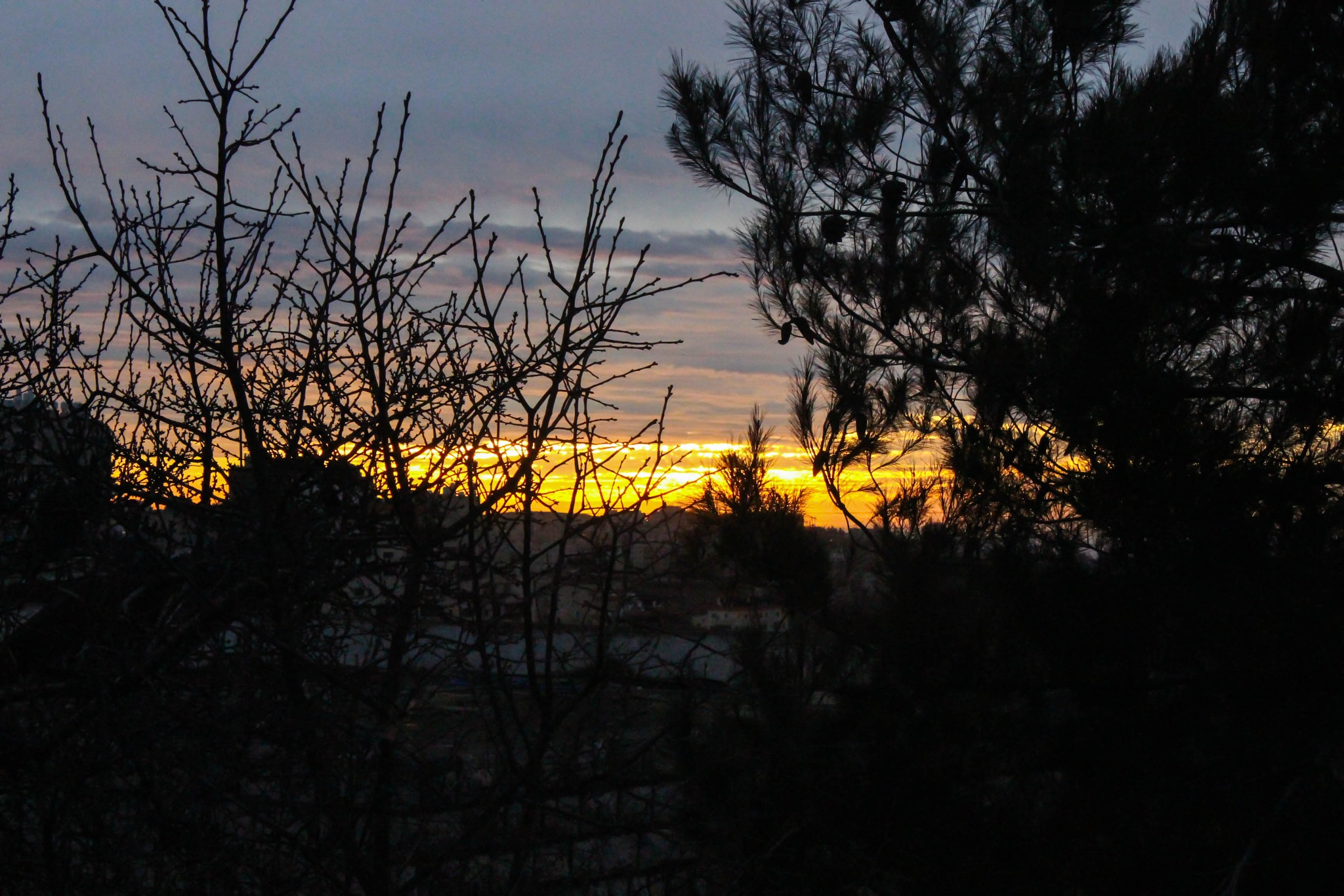 November Sunset by samahannoun
