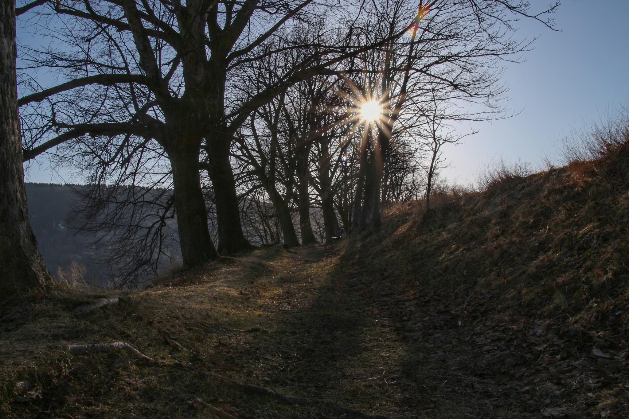 Sun rays by Kuba Šír