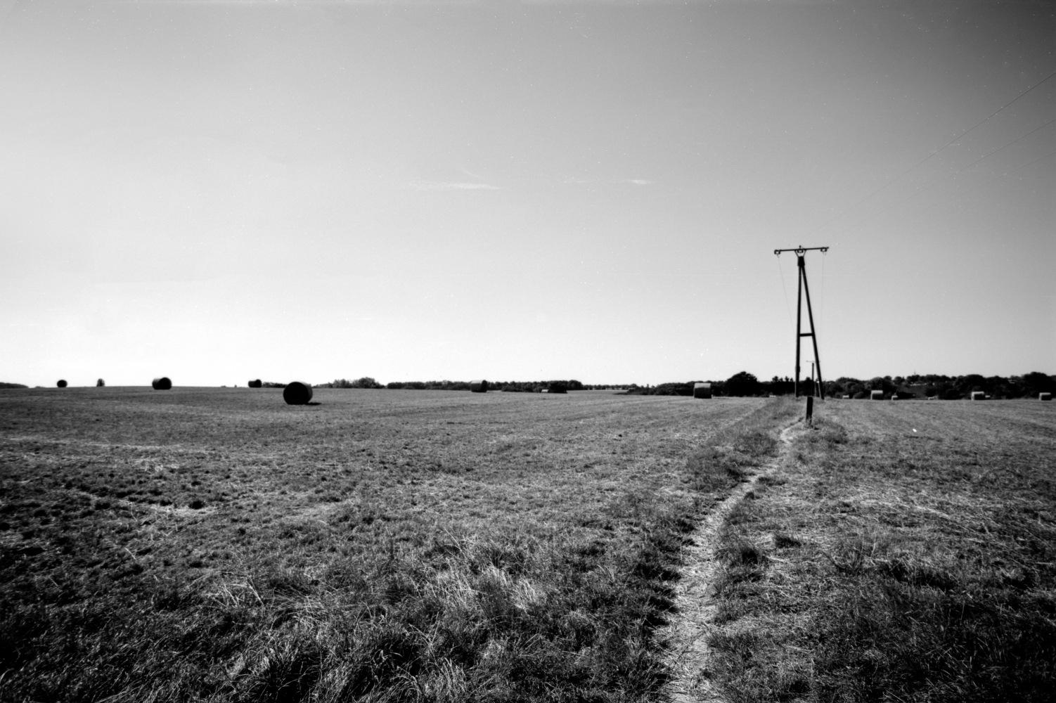 Path by Analogue Debris