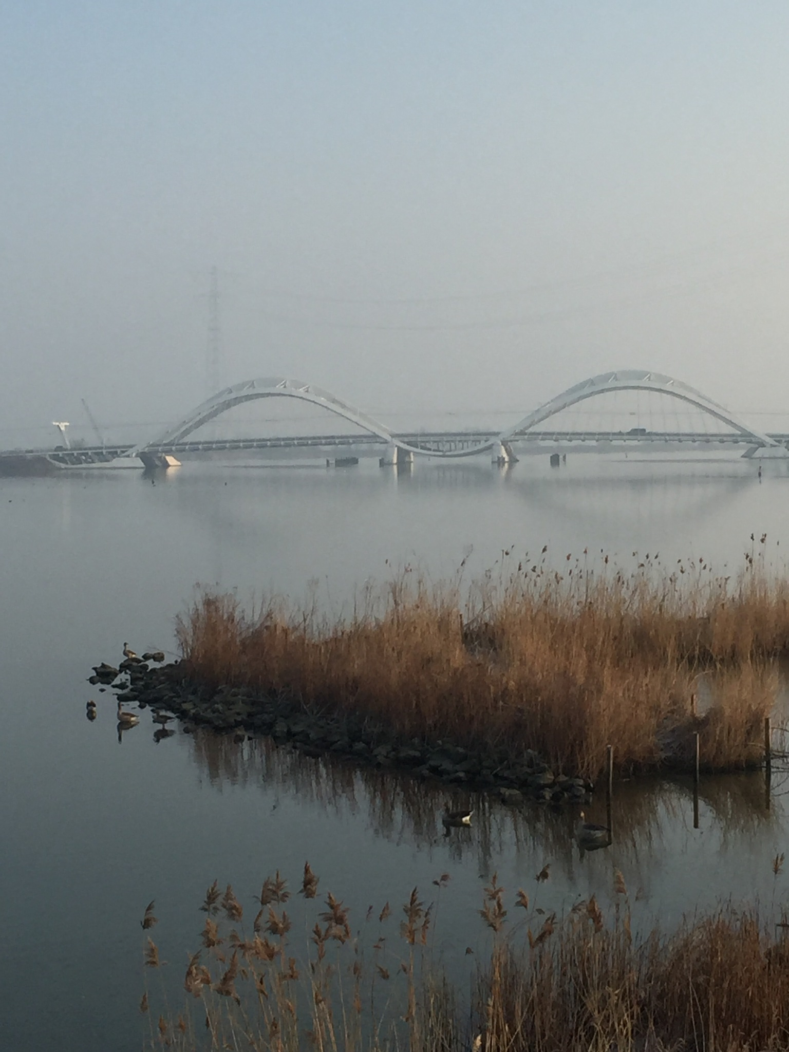 Bridge from afar by Peter P C