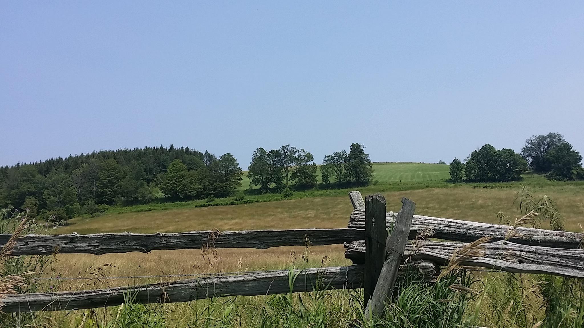 Farm by Kay Den