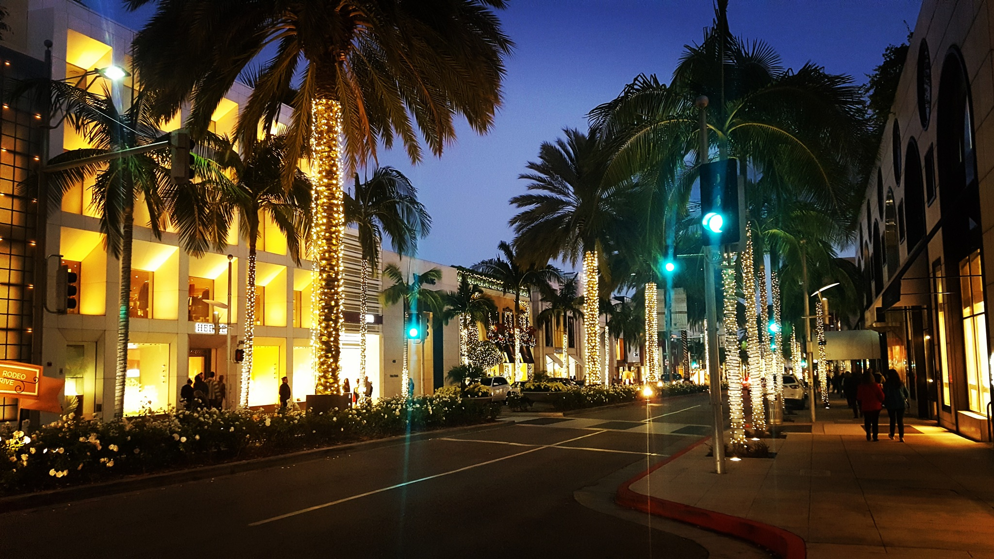 Beverly Hills  by Denise S.