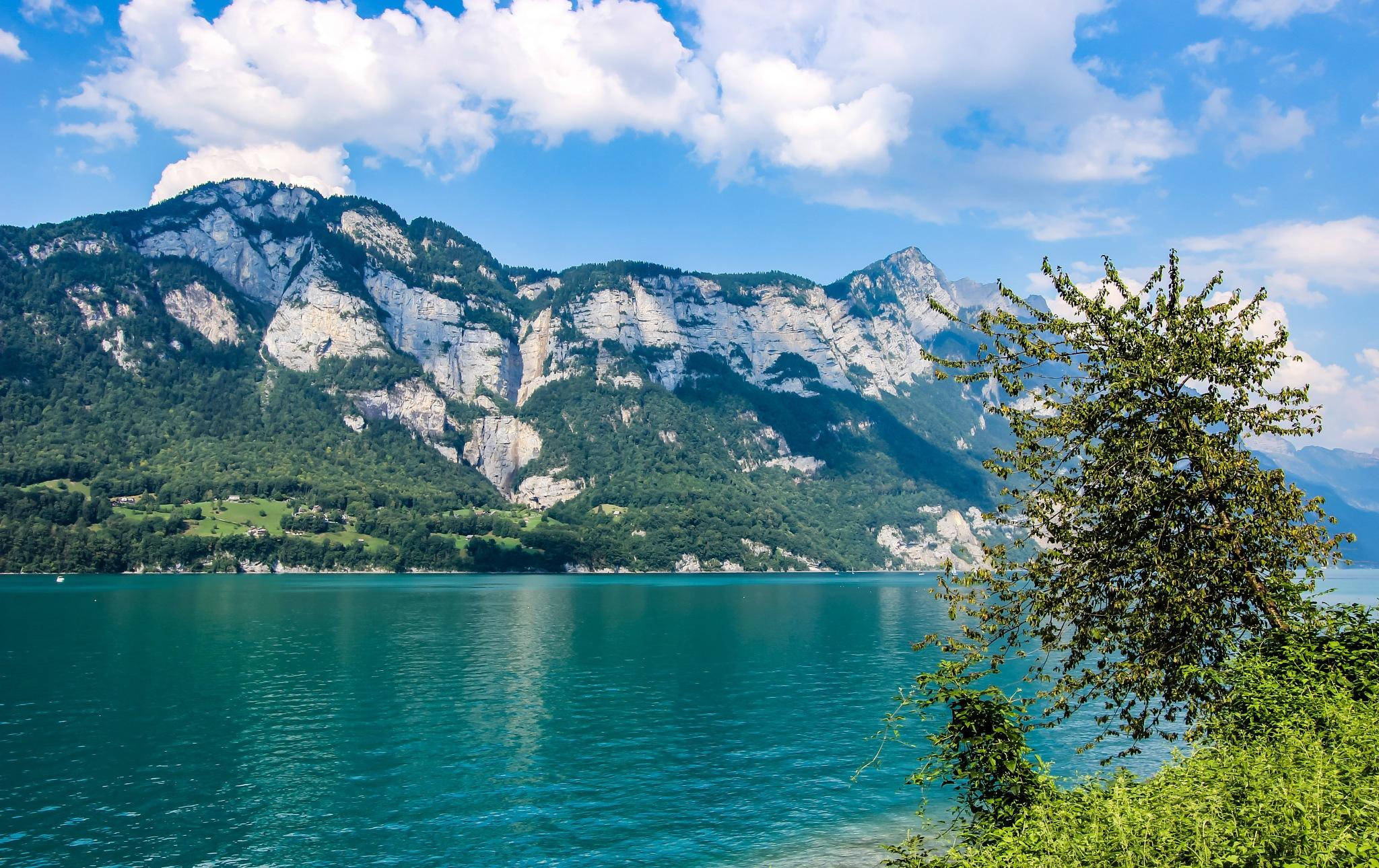 Walensee • Switzerland  by Denise S.