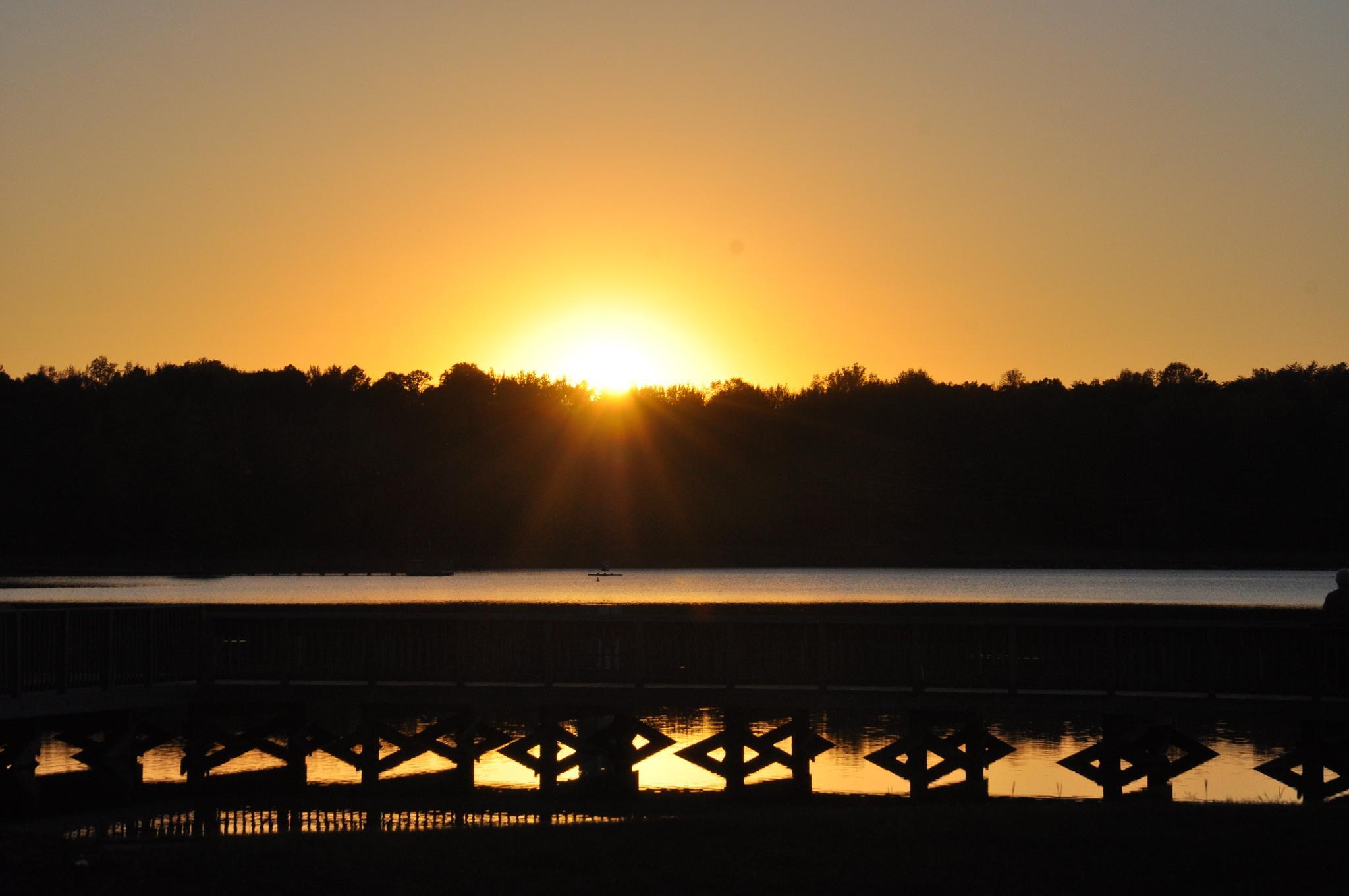 An Evening Stroll by Lynn Lowery