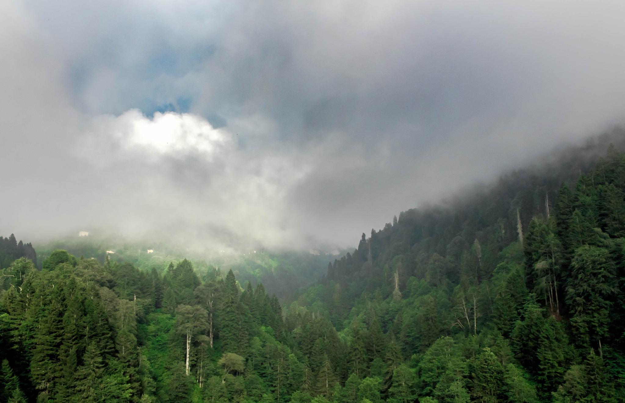When Blue Takes a Peek Through the Clouds by C. Sinan Altundag