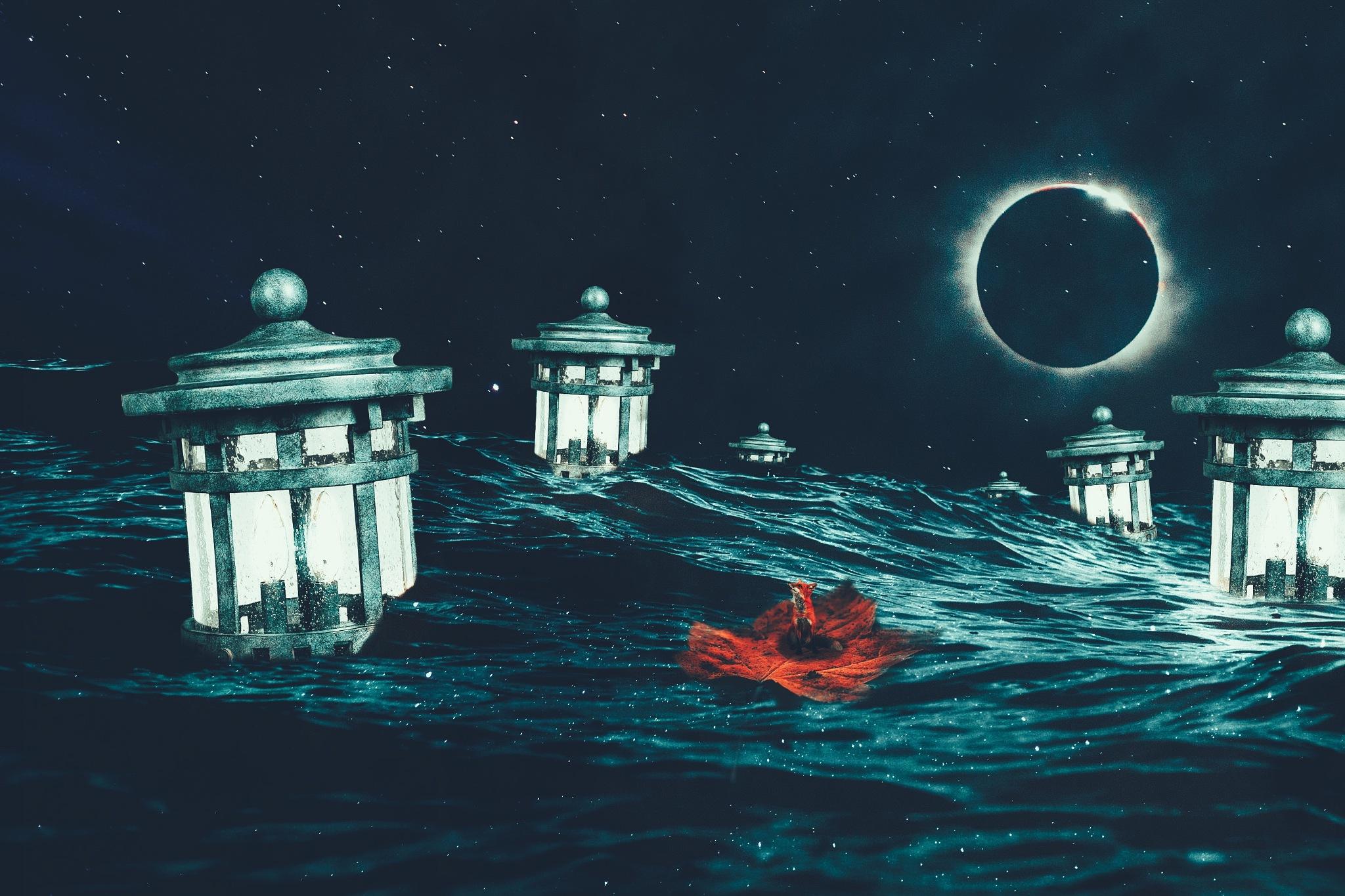 Lanterns and Fox. by Elmir Mammedov
