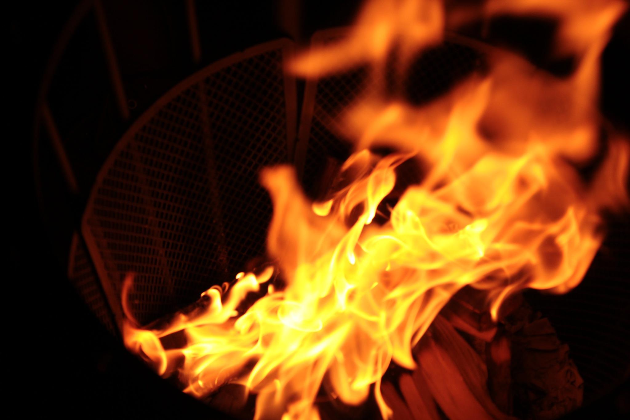 Fire by Sarah Johnson
