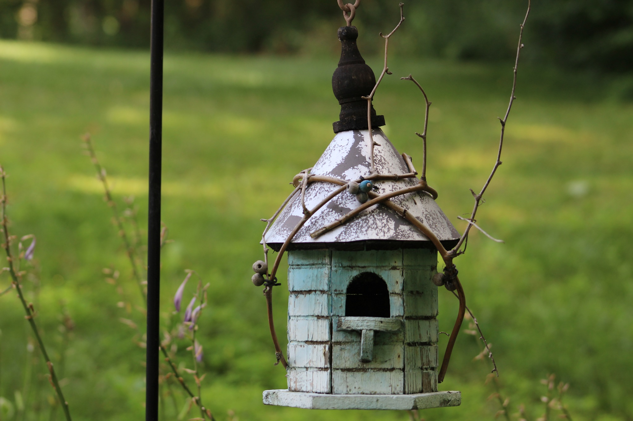 Rustic Chirp by Trena Hambly