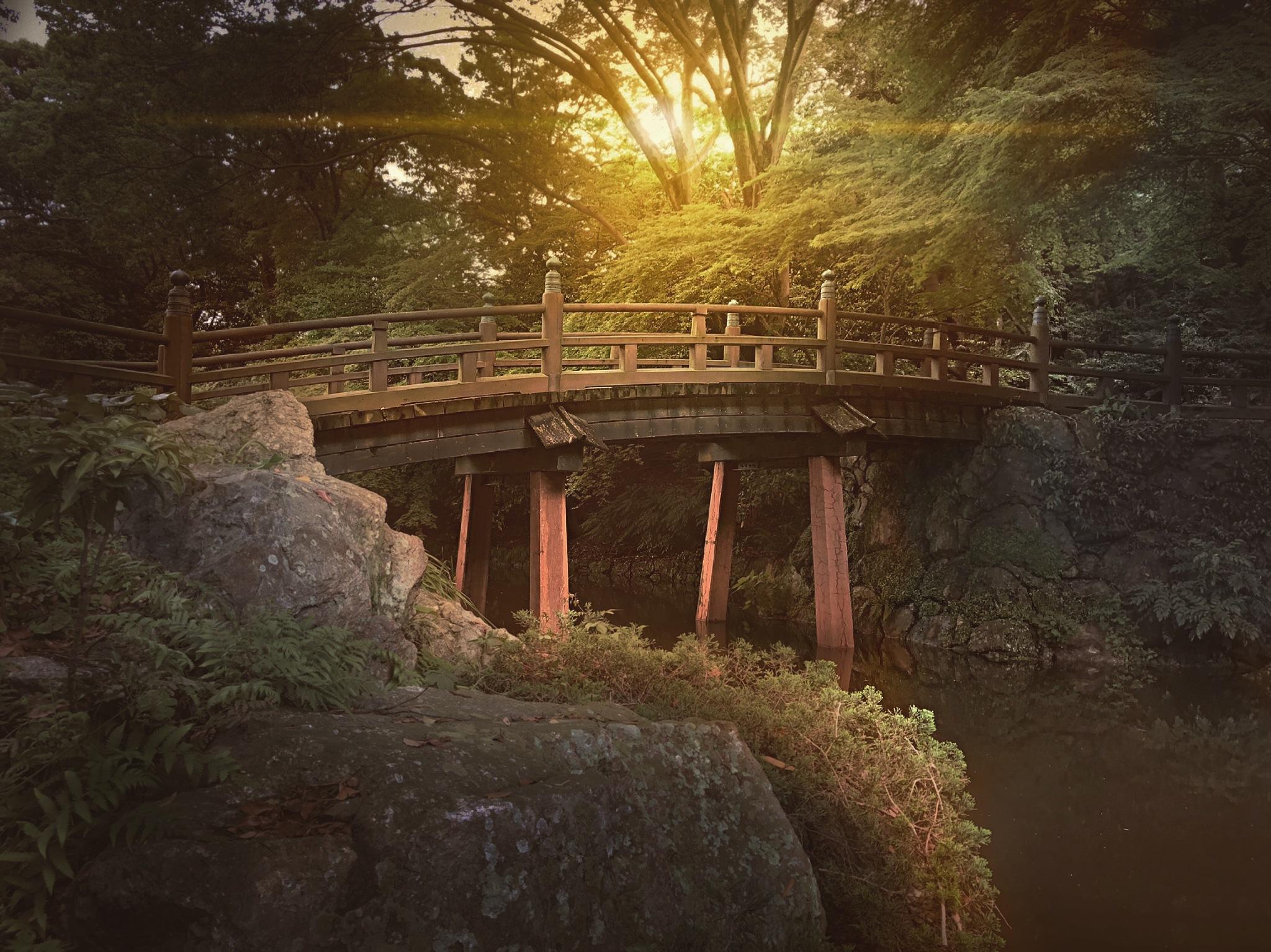 Parque castelo Hamamatsu  by Jhonatan de Oliveira Silva
