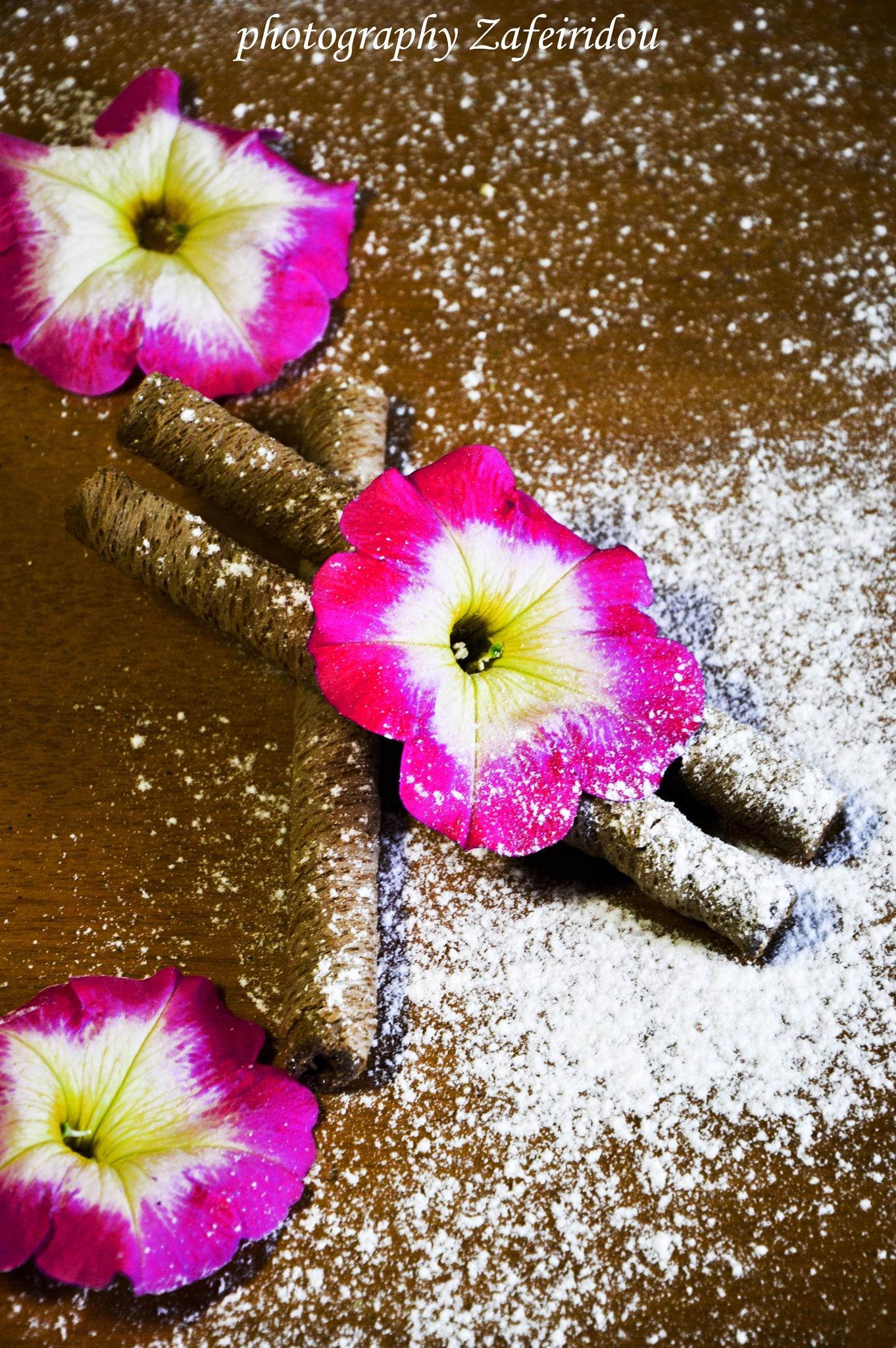 Flowers by Konstantina Zafeiridou